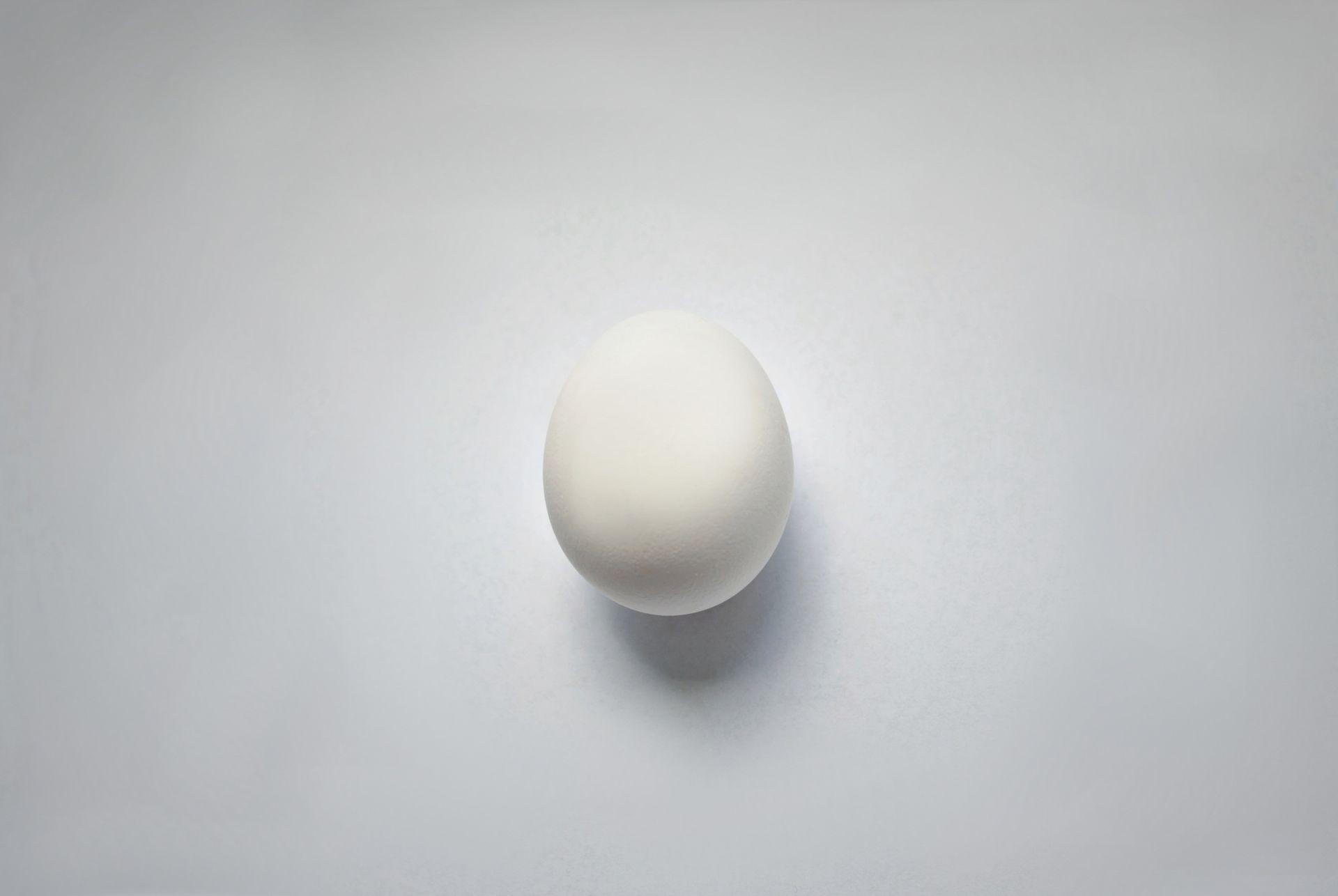white egg wallpaper