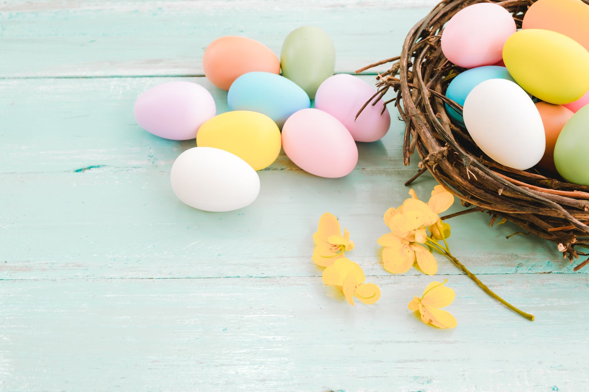 easter egg clean clear wallpaper background