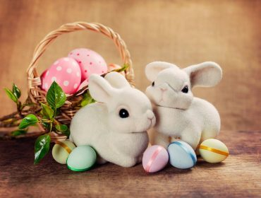 free colletion easter bunny