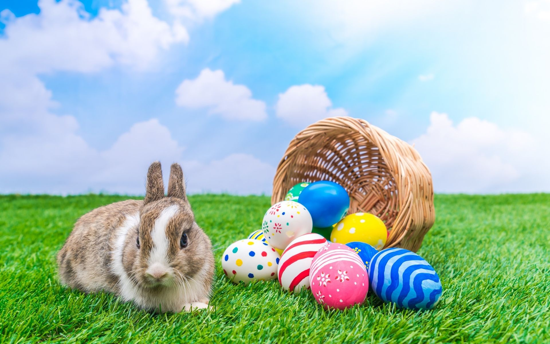 Easter Backgrounds download free