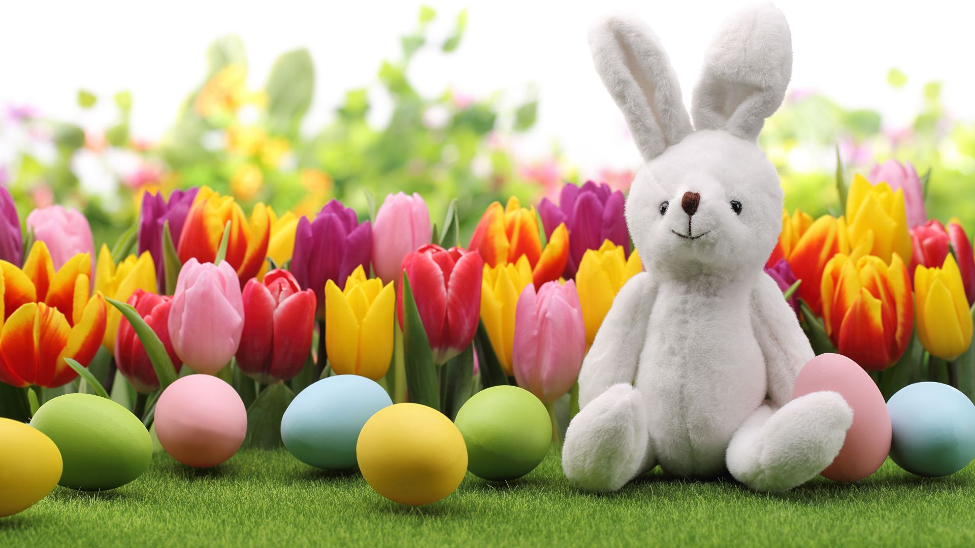 Easter Backgrounds bunny with flowers
