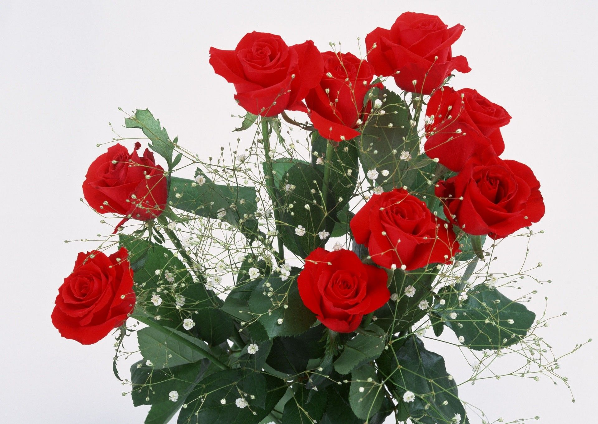 Flower bouquet, bouquet of red roses