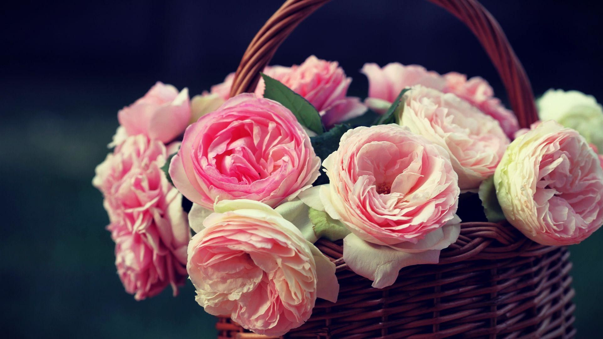 basket with pink roses цфддзфзук