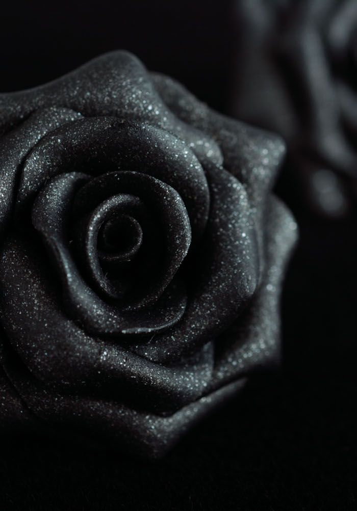 iphone wallpaper black rose
