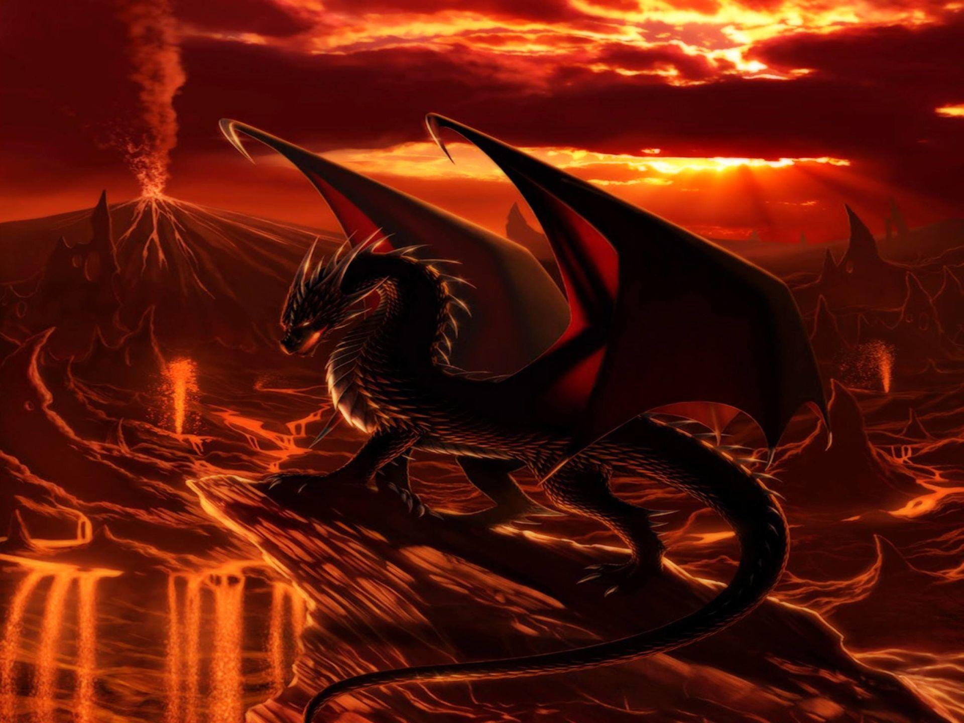 dragon background image