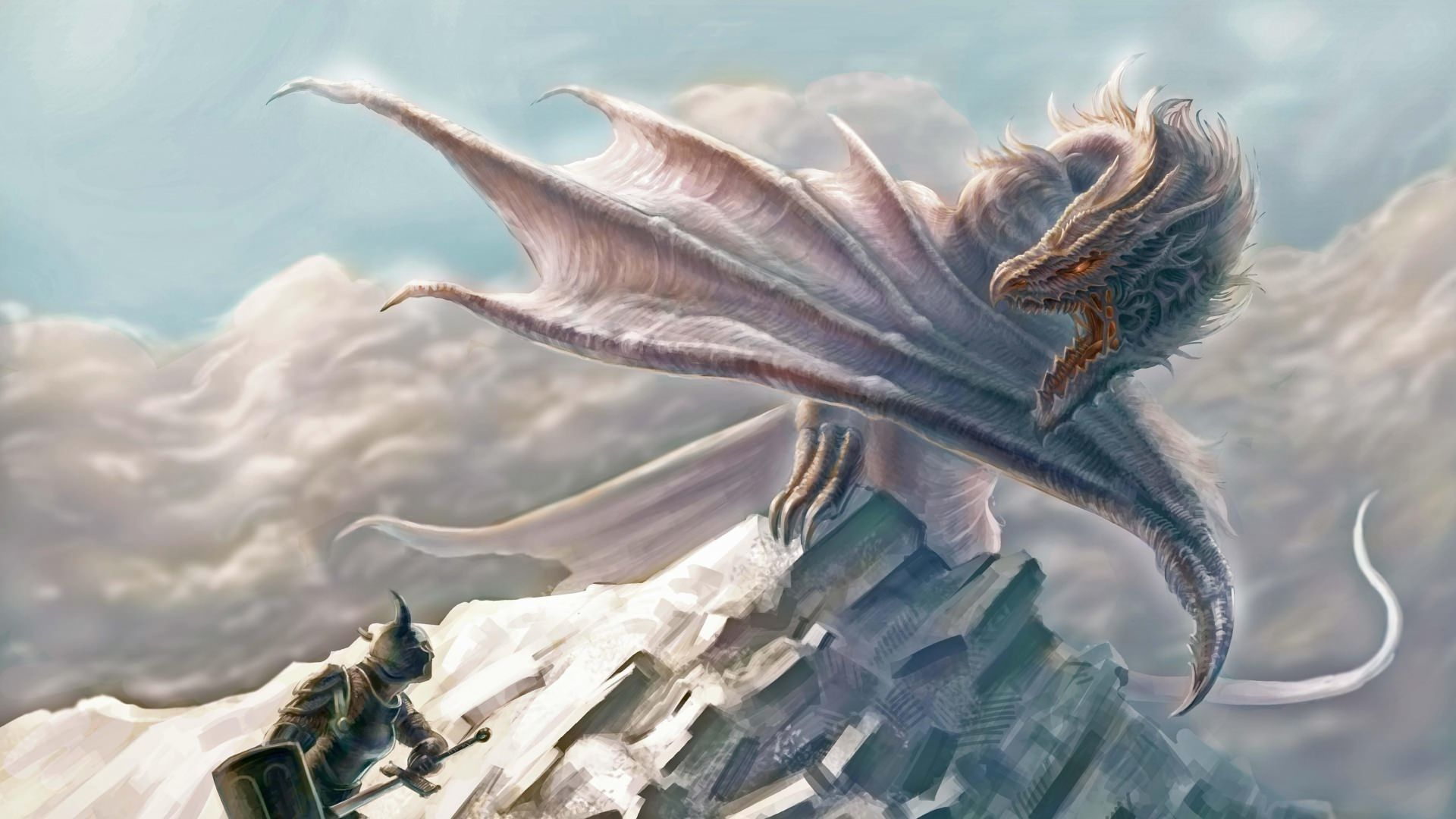 dragon pics hd