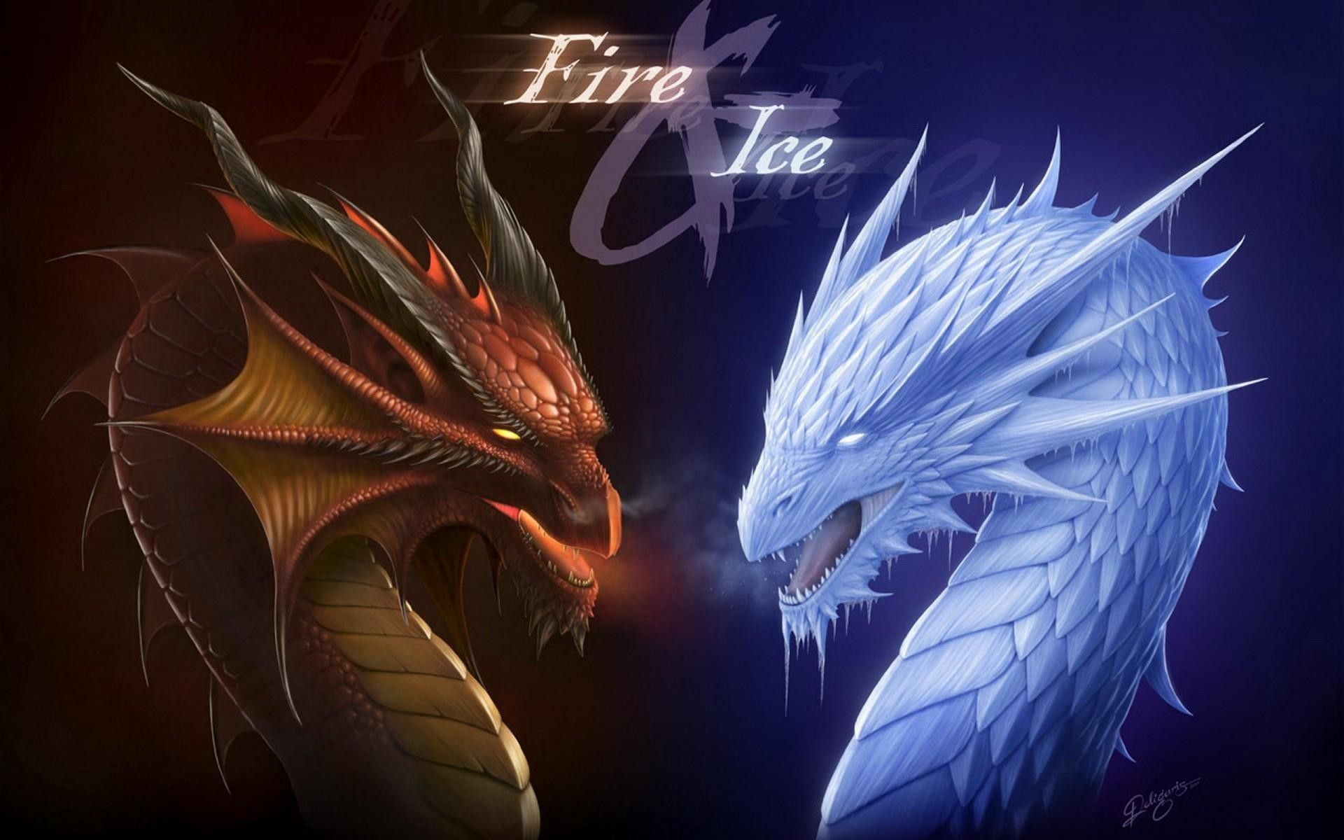 fire ice two dragon wallpaper
