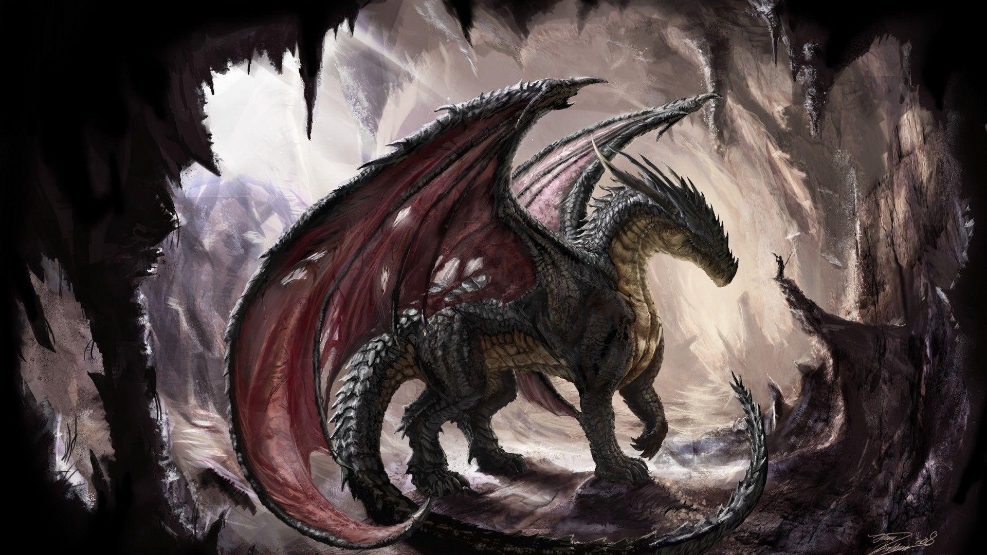 dragon pic download