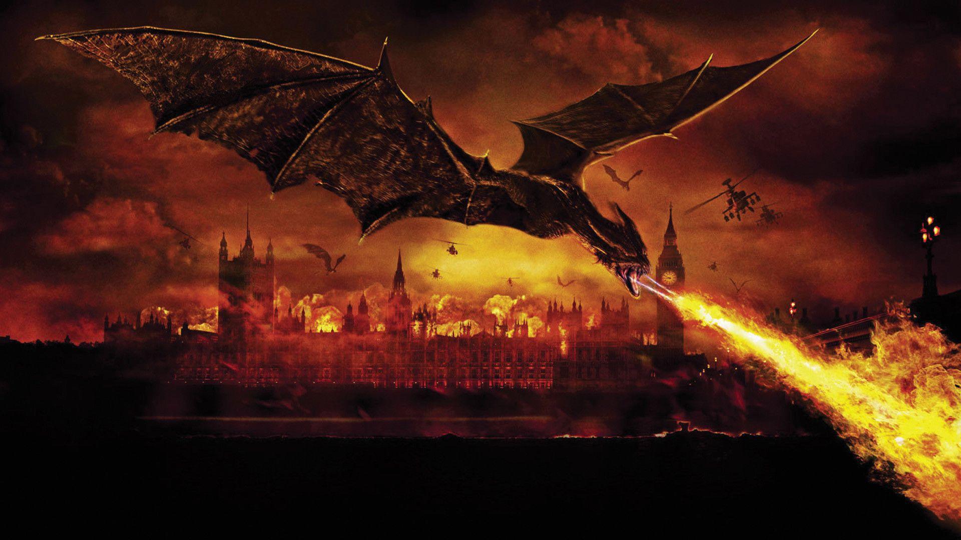 fire dragon photo