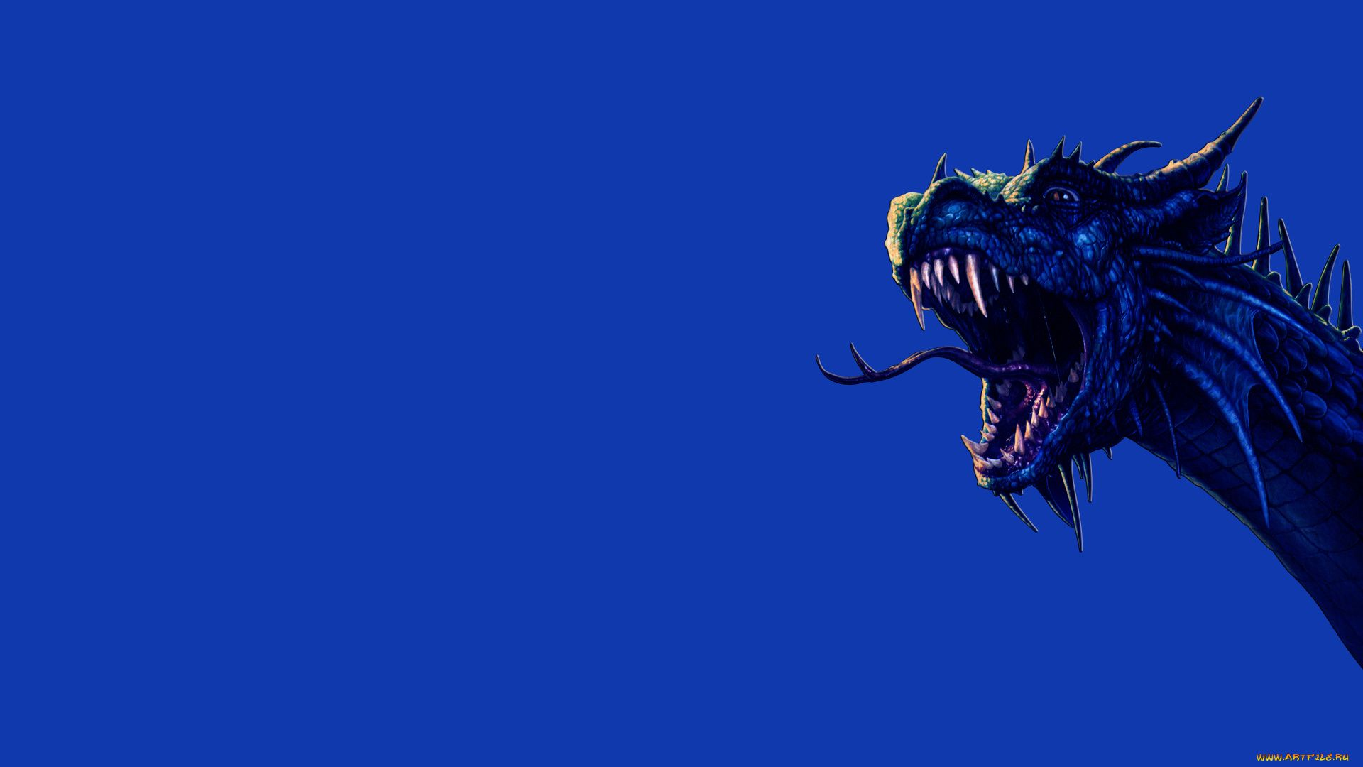 blue dragon background