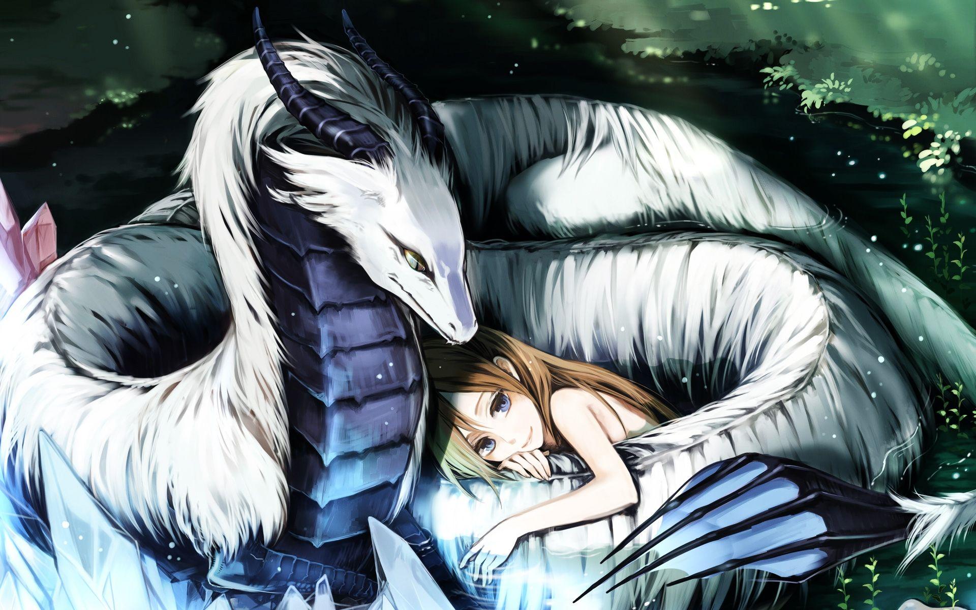 dragon wallpaper cute anime