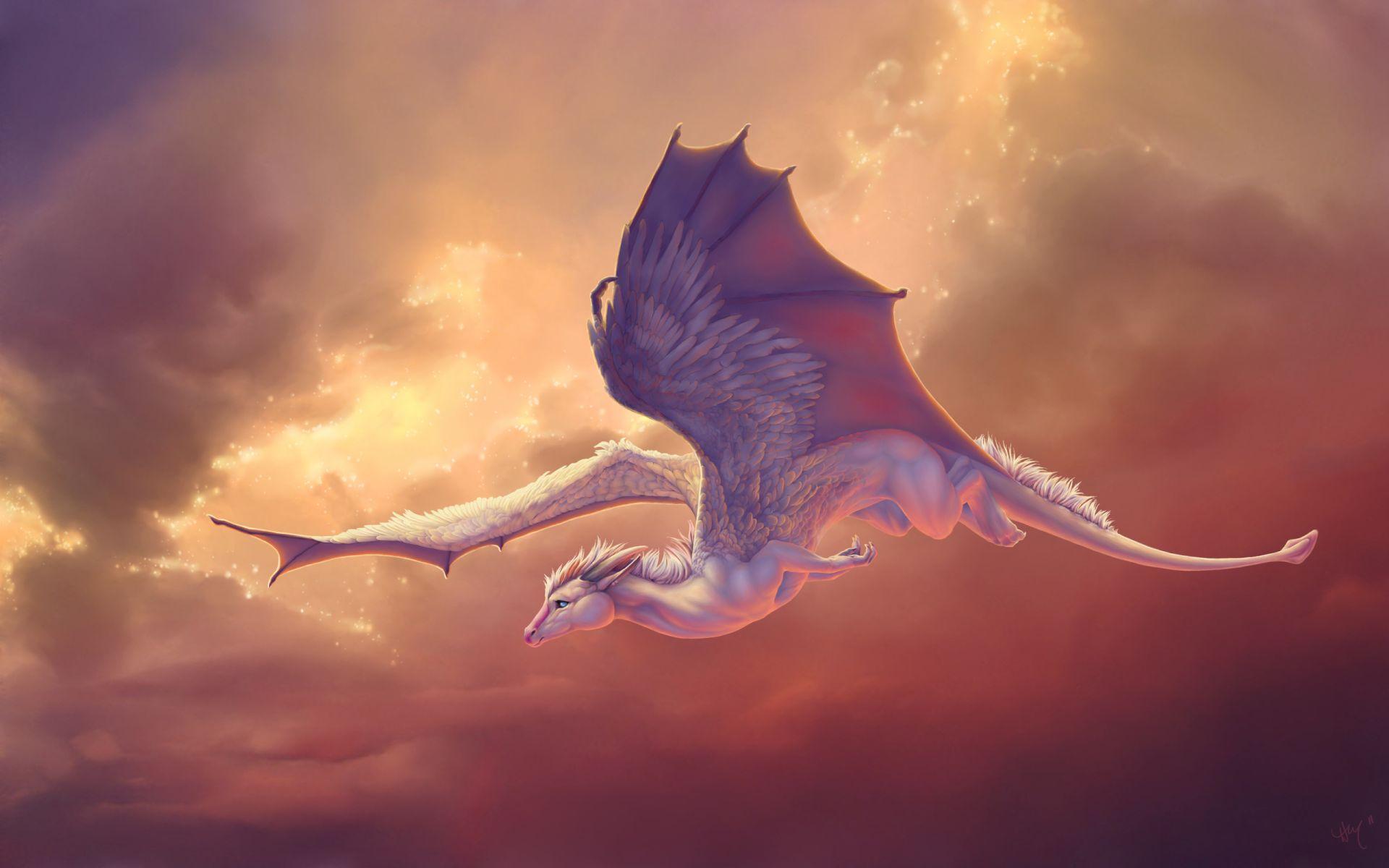 16 Cute Dragon Wallpapers - WallpaperBoat