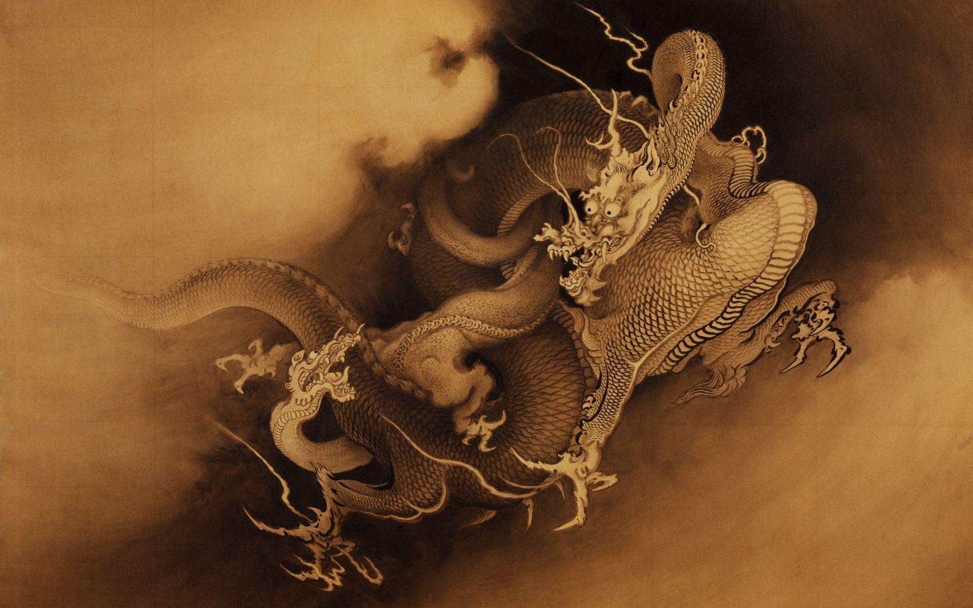 the dragon picture