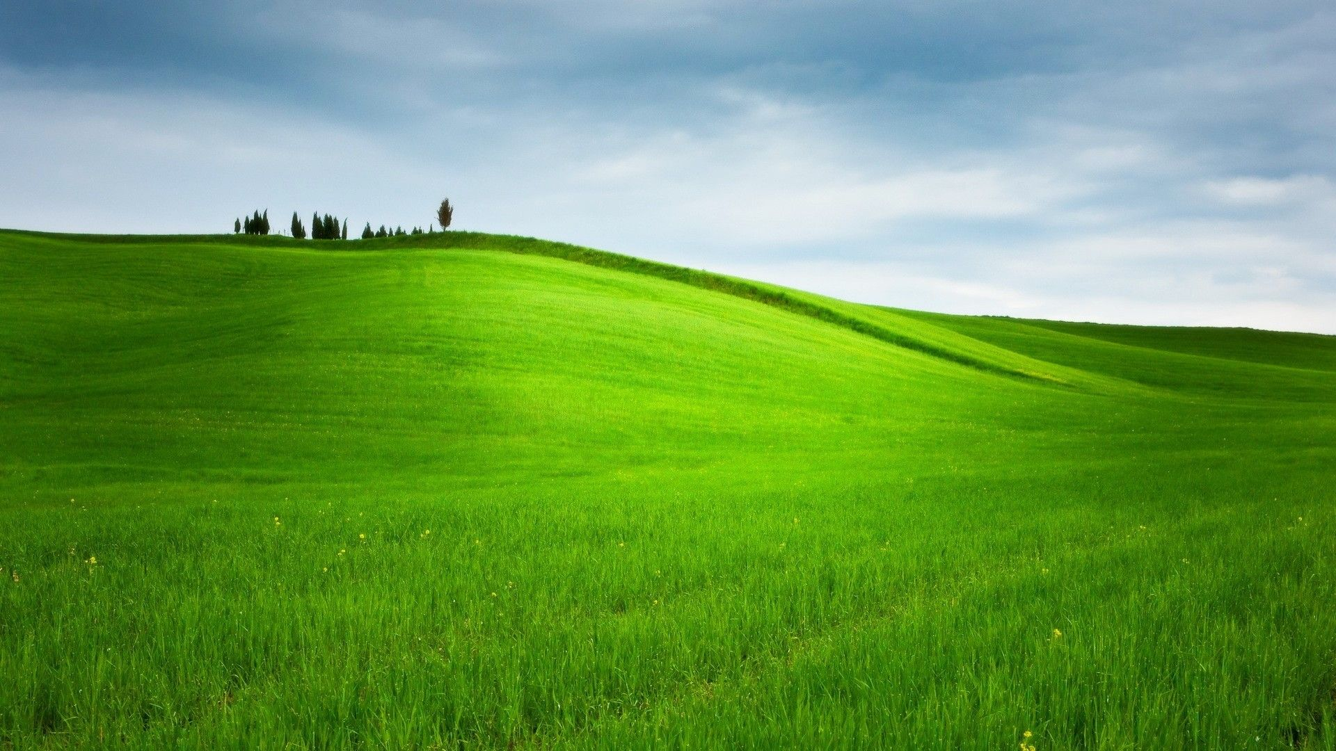 green hill summer wallpaper
