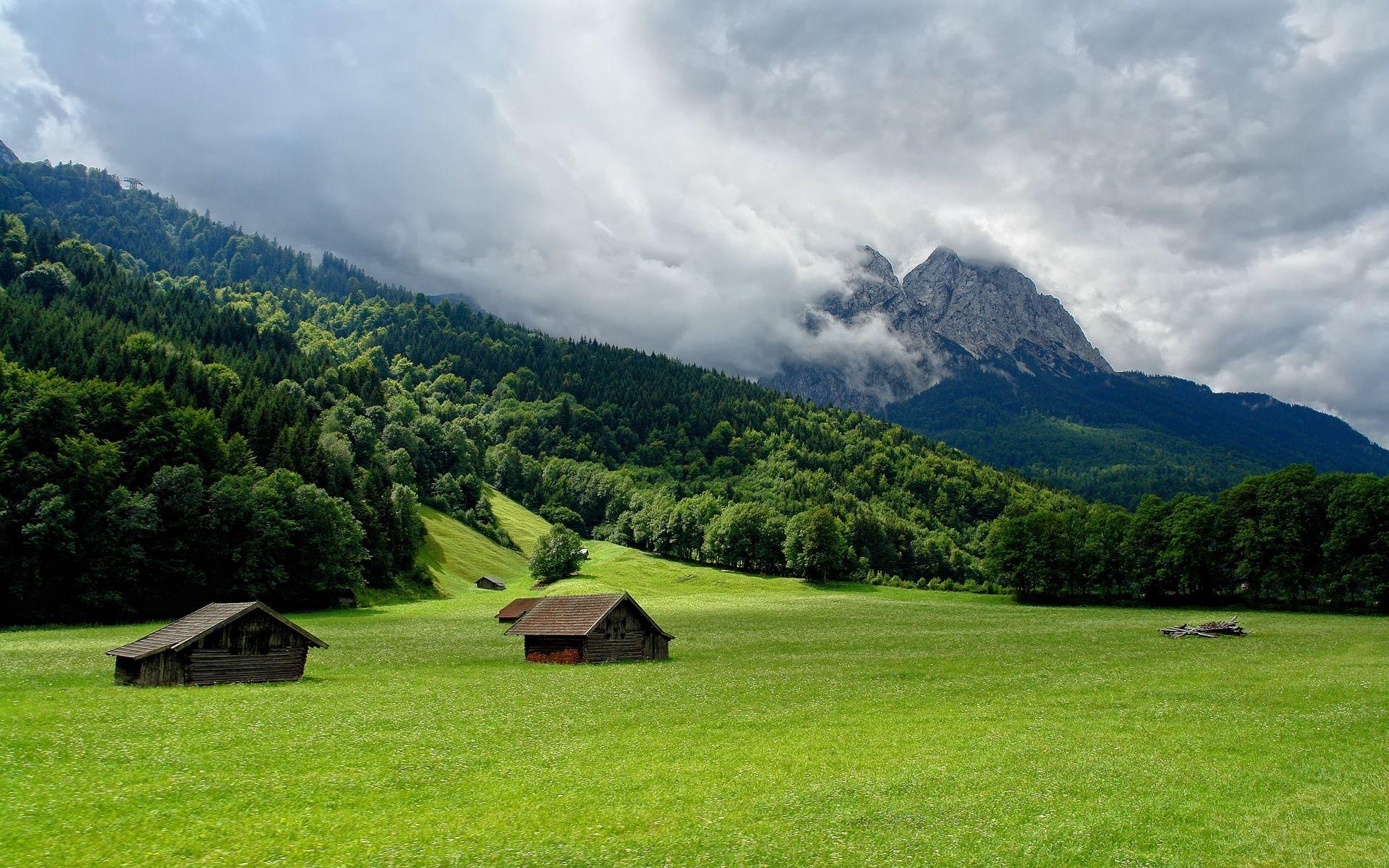 summer good green wallpaper with mountain