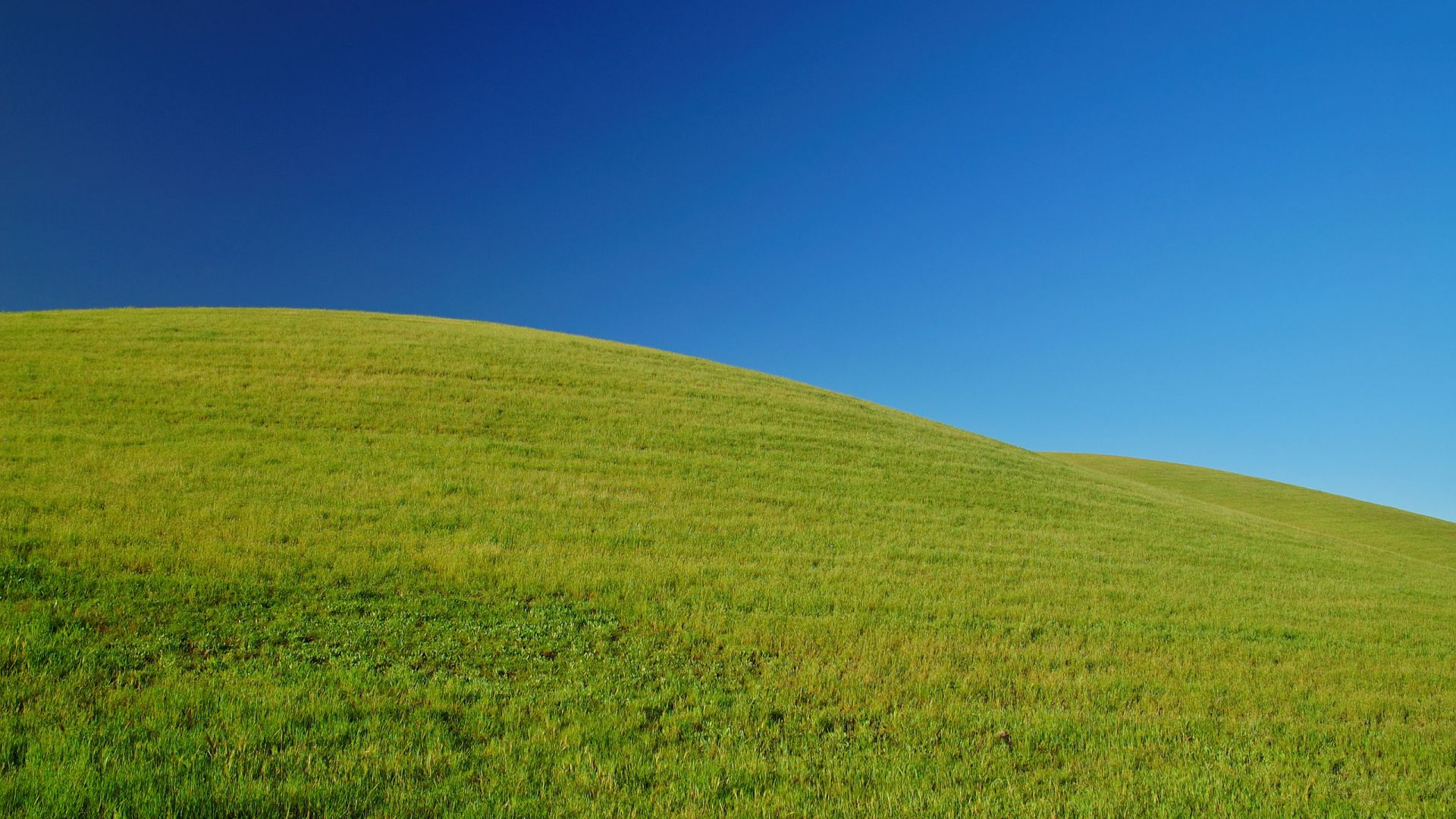 green hill and blue sky wallpaper