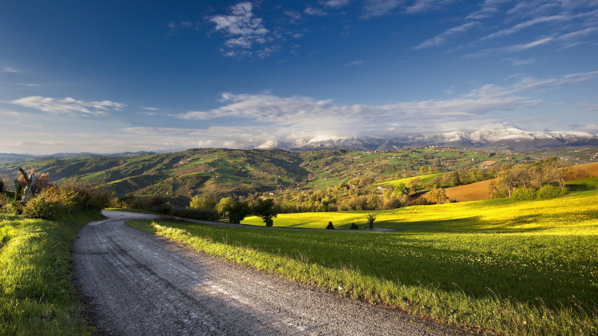nature summer road and green lanscape