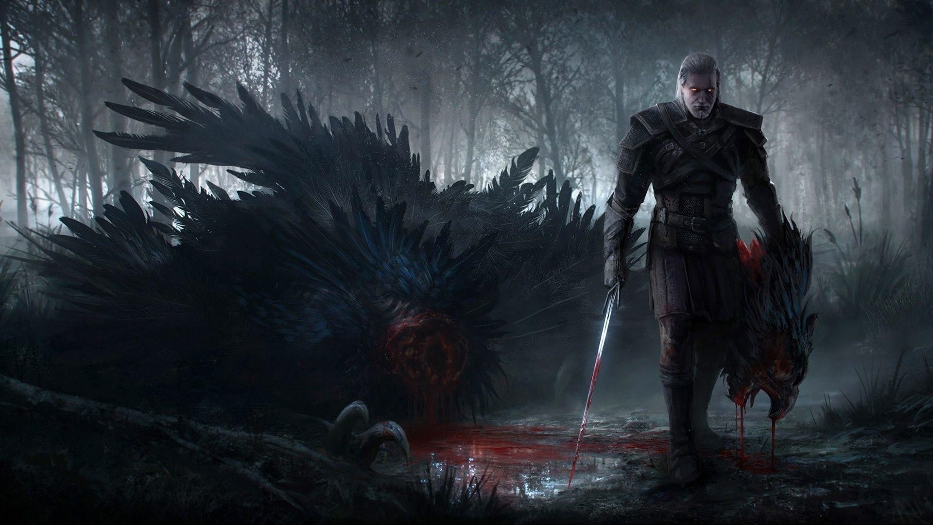 The Witcher, Picture