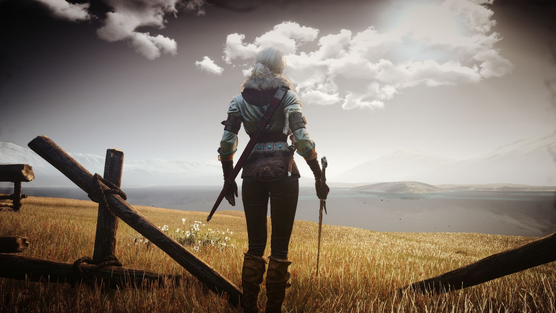 The Witcher Ciri, Desktop Wallpaper