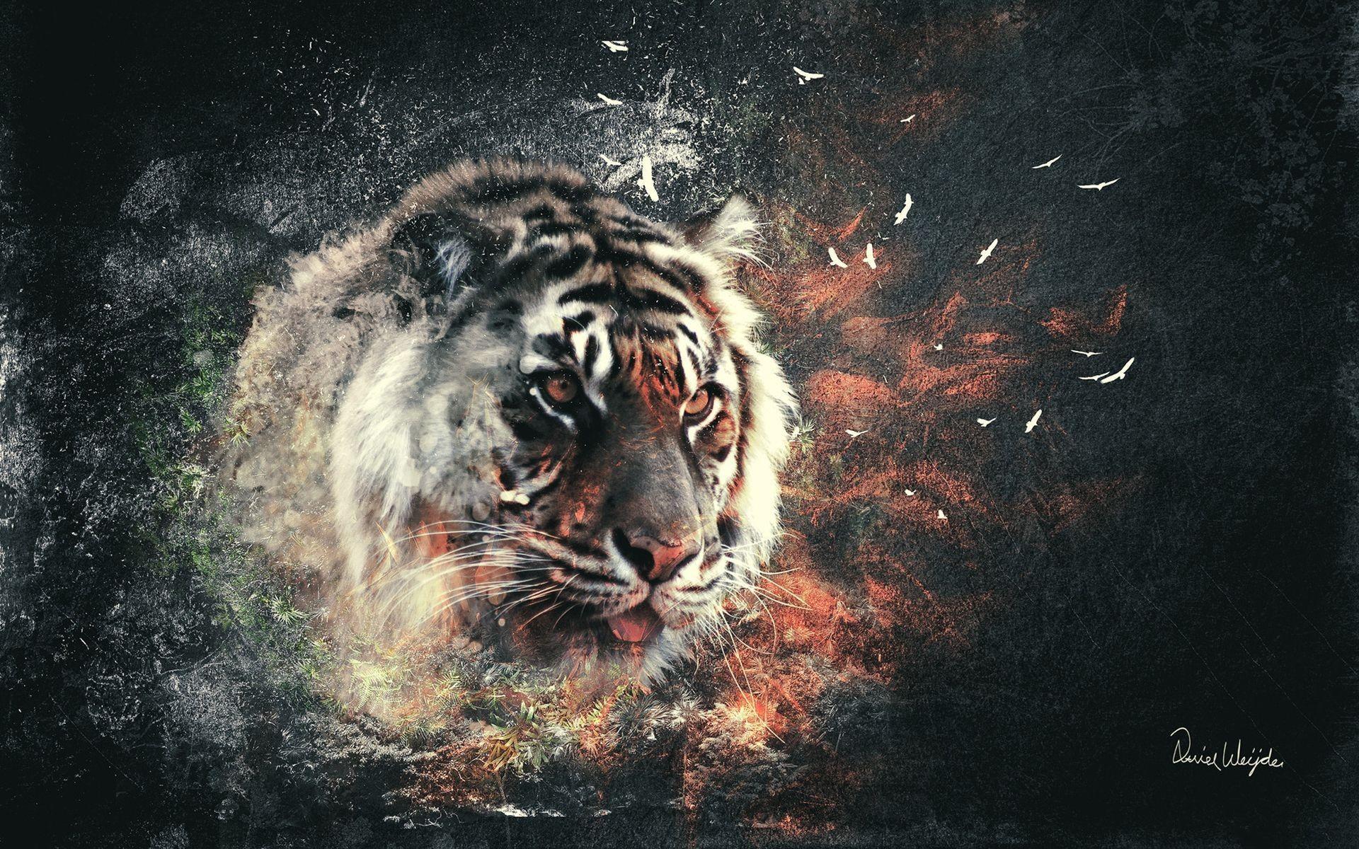 Tiger Art, Best Wallpaper