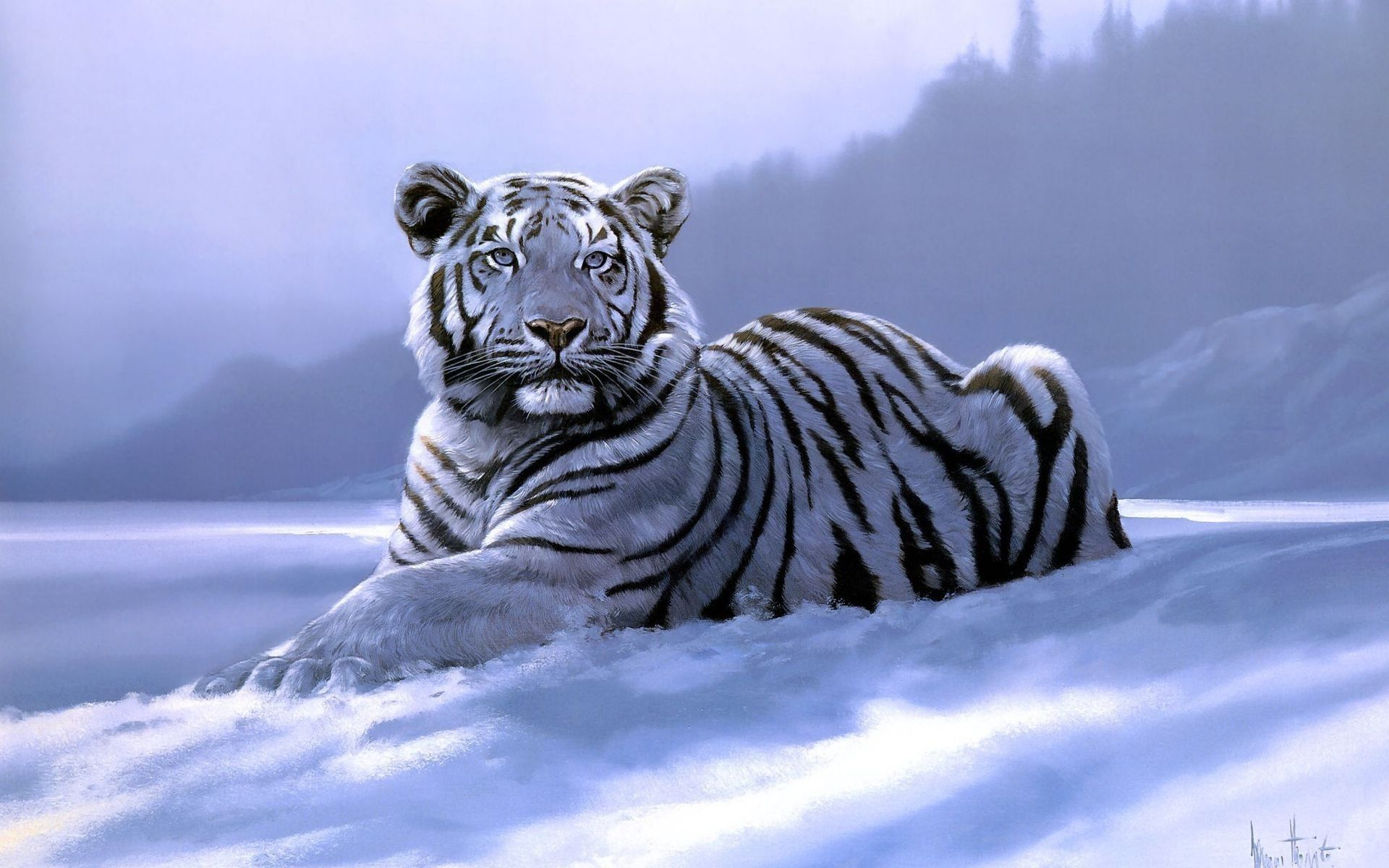 White Tiger Art, Free Wallpaper
