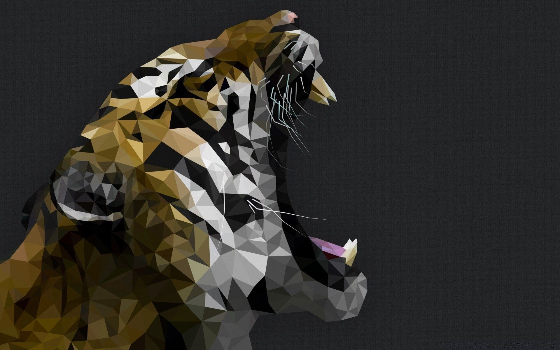 Tiger Roars Art, Picture