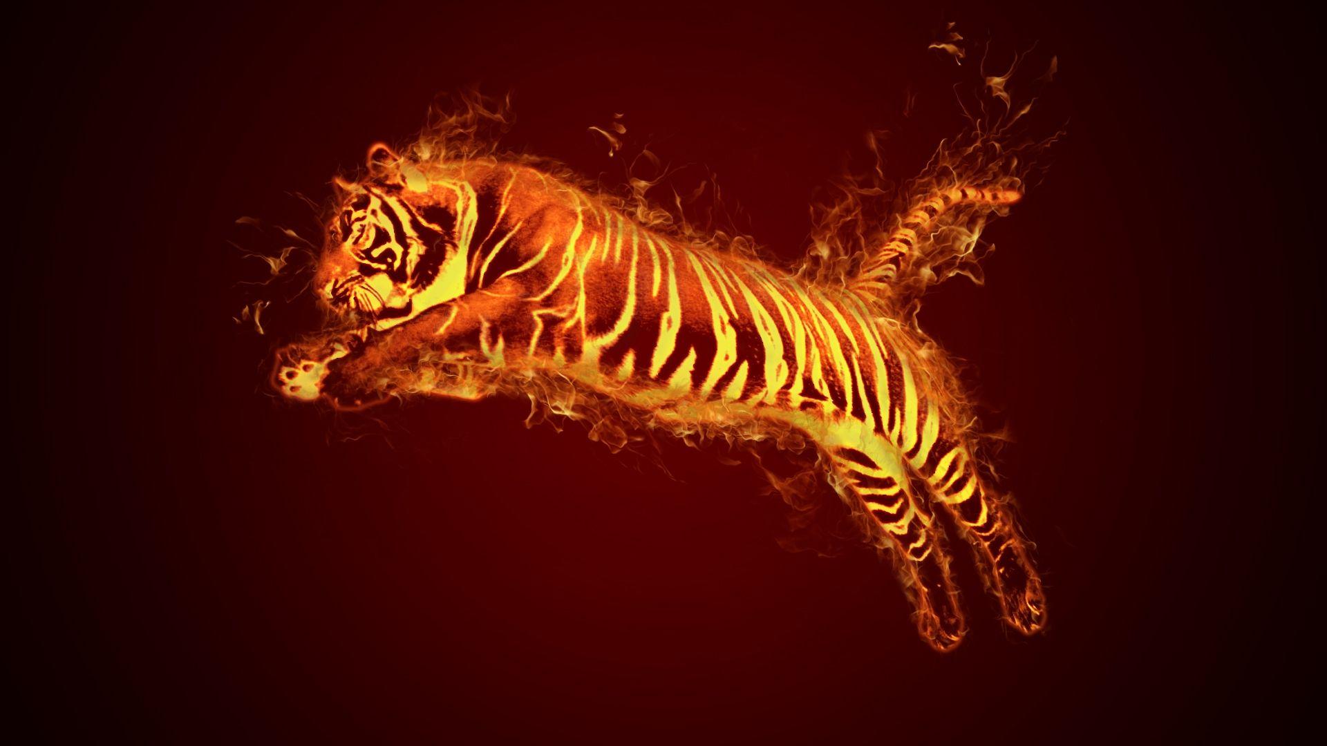 Tiger Art Fire, New Wallpaper