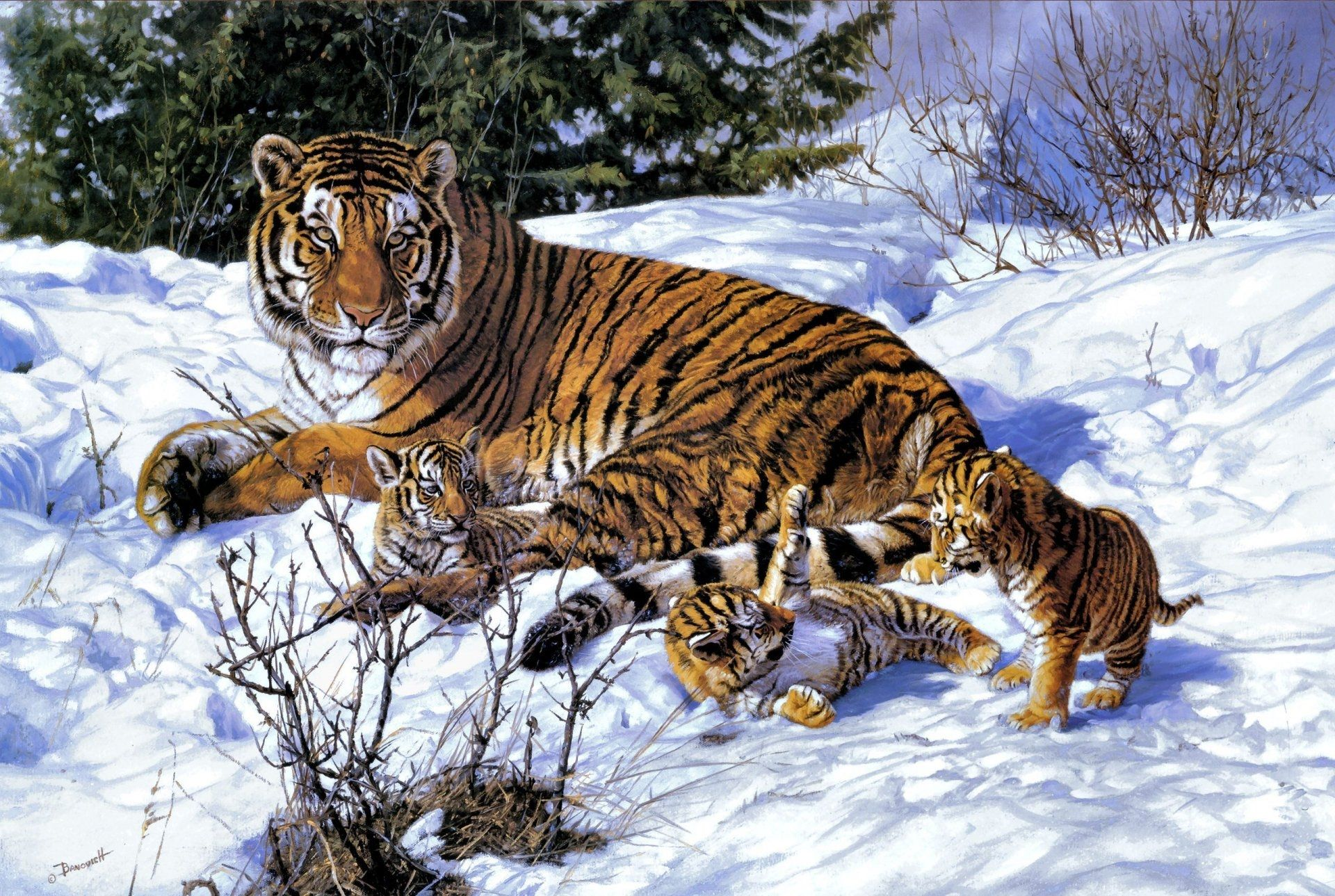 Tiger with baby Art, HD Wallpaper