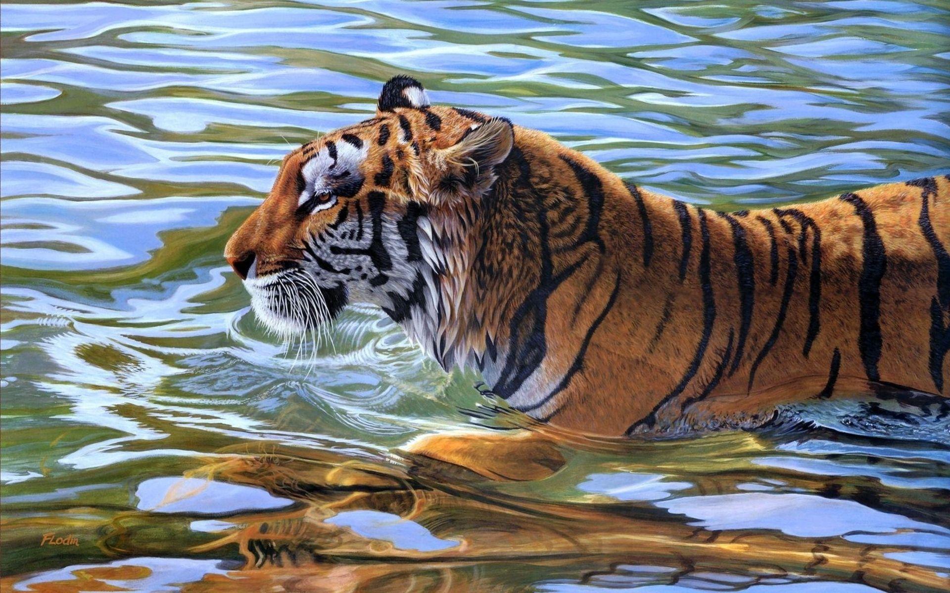 Tiger swims Art, Nice Wallpaper