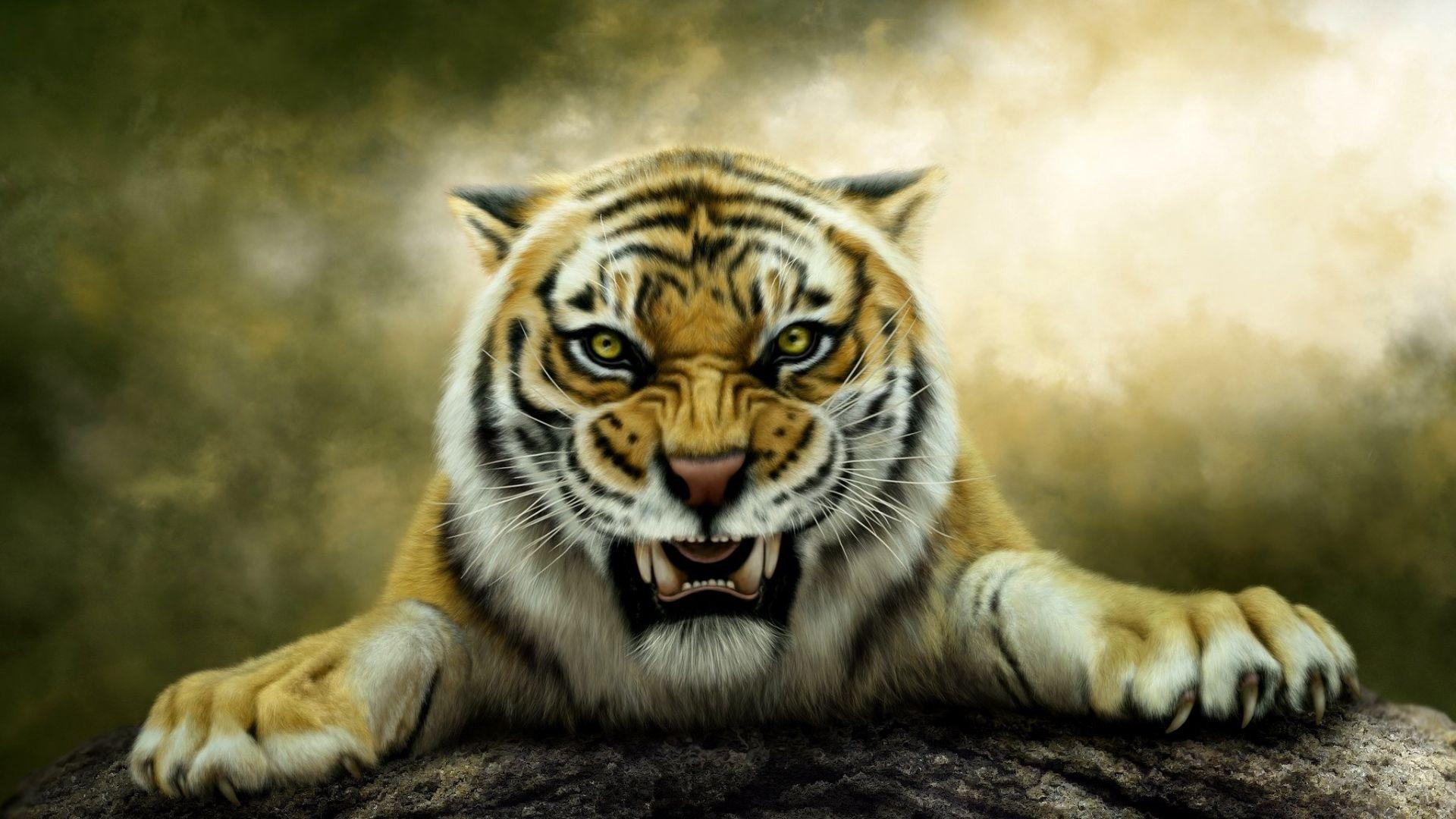 Tiger Art Angry, Free Desktop Wallpaper