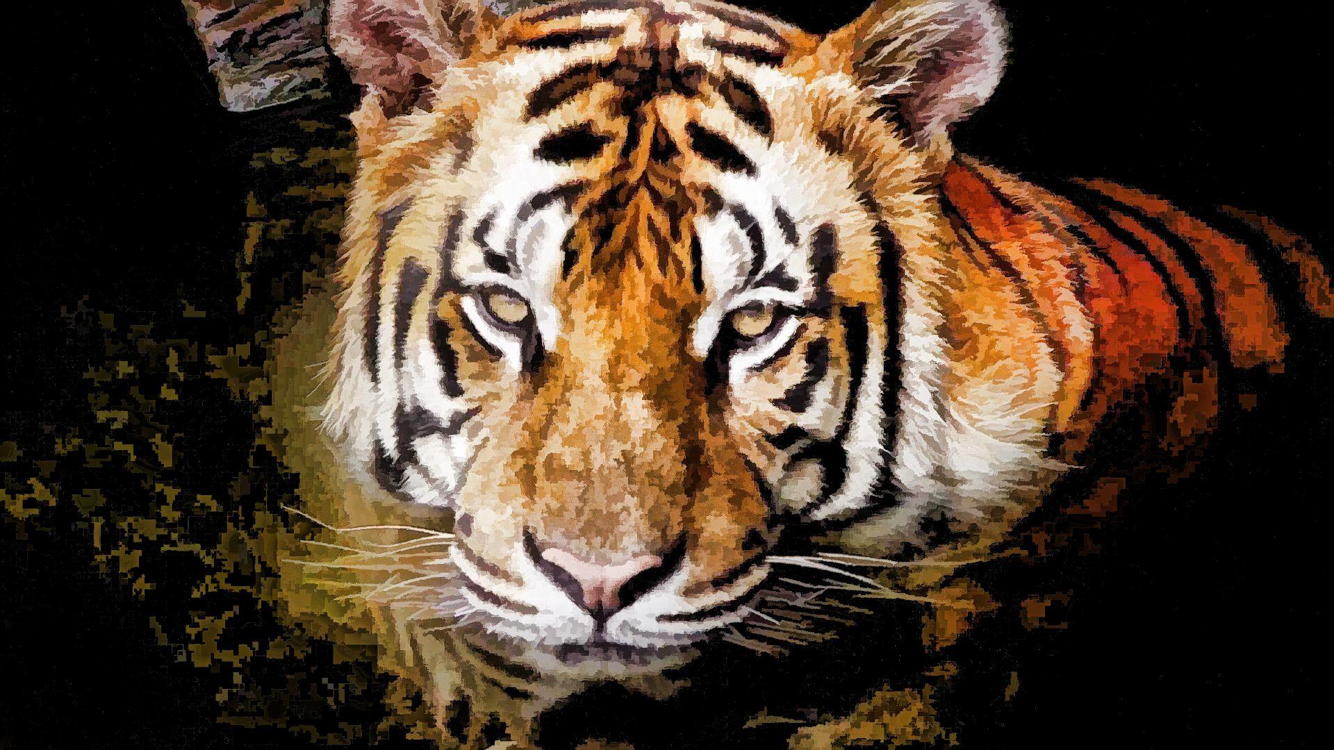 Tiger Art, Nice Wallpaper
