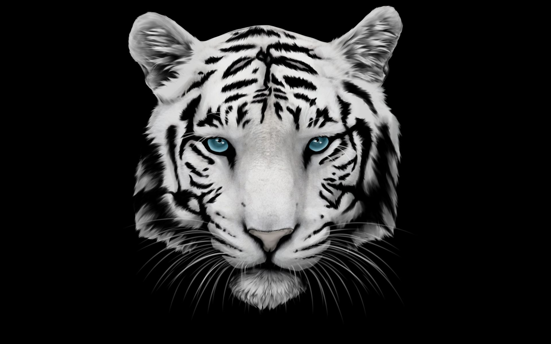 White Tiger Art Face, Background