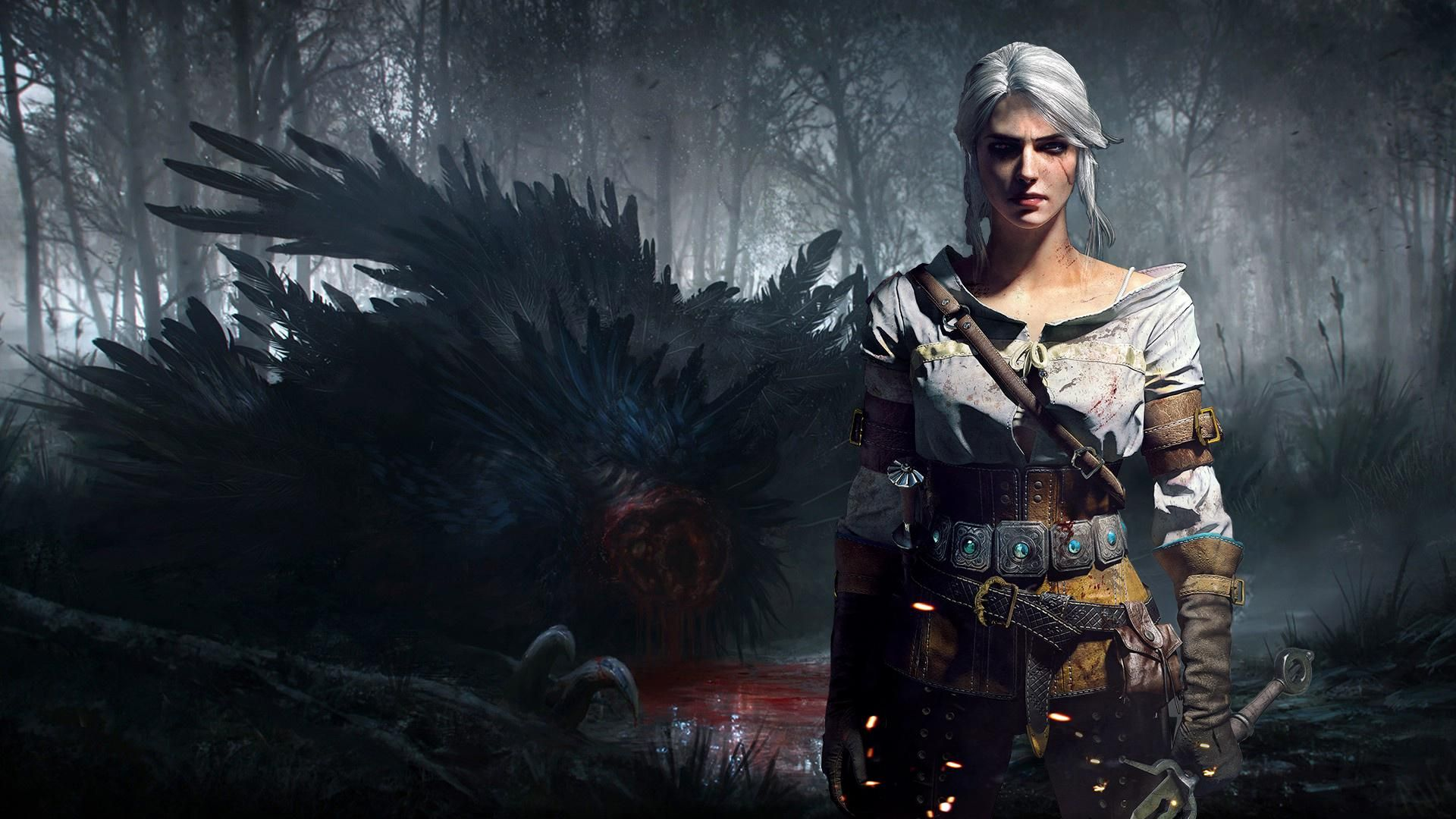 Witcher Ciri, Background