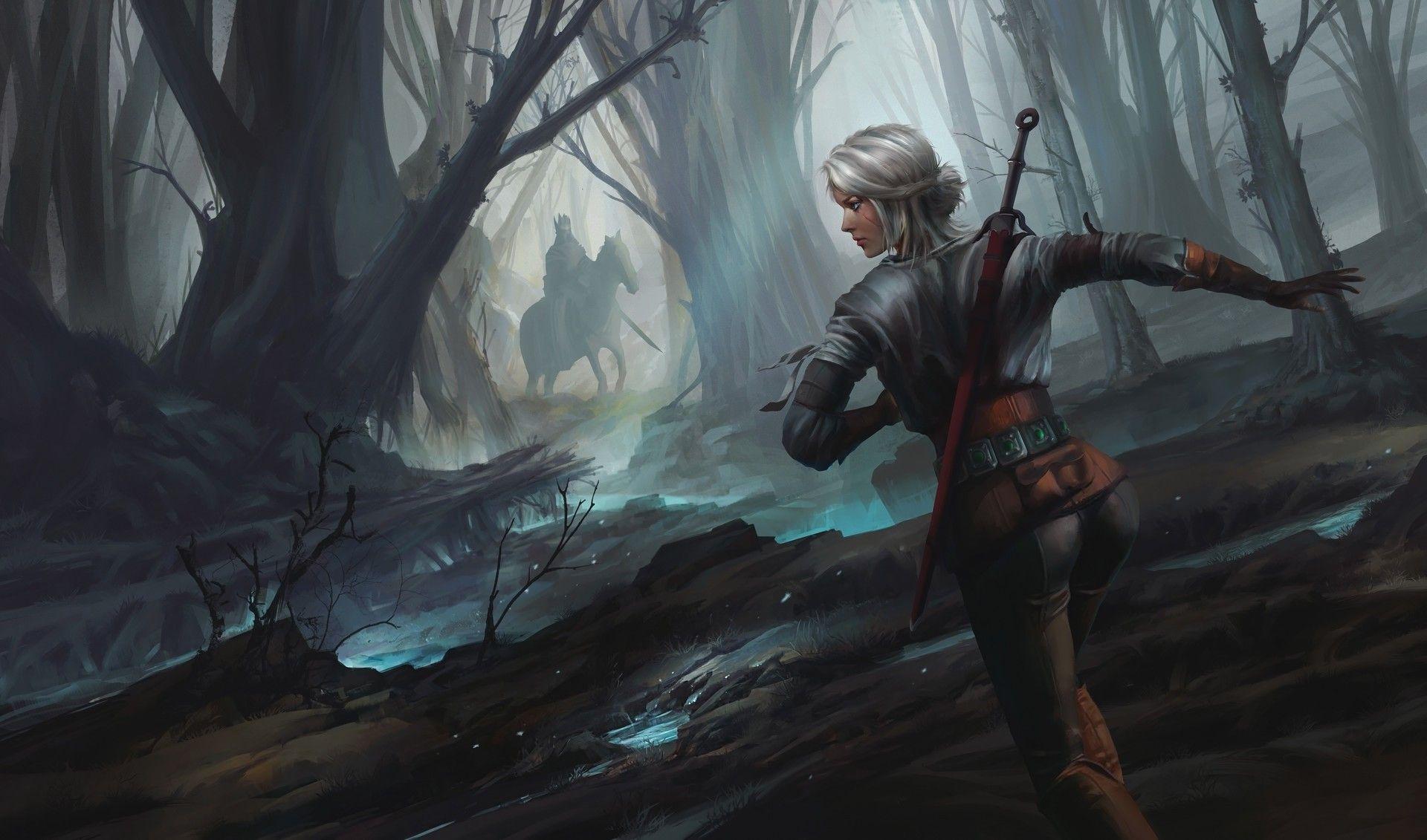 Witcher Ciri art, Cool HD Wallpaper