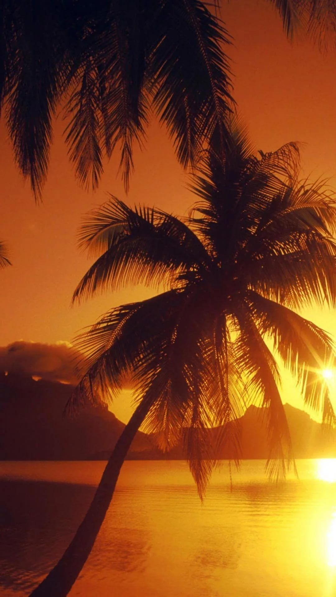 Beautiful Sunset s7 Edge Wallpaper
