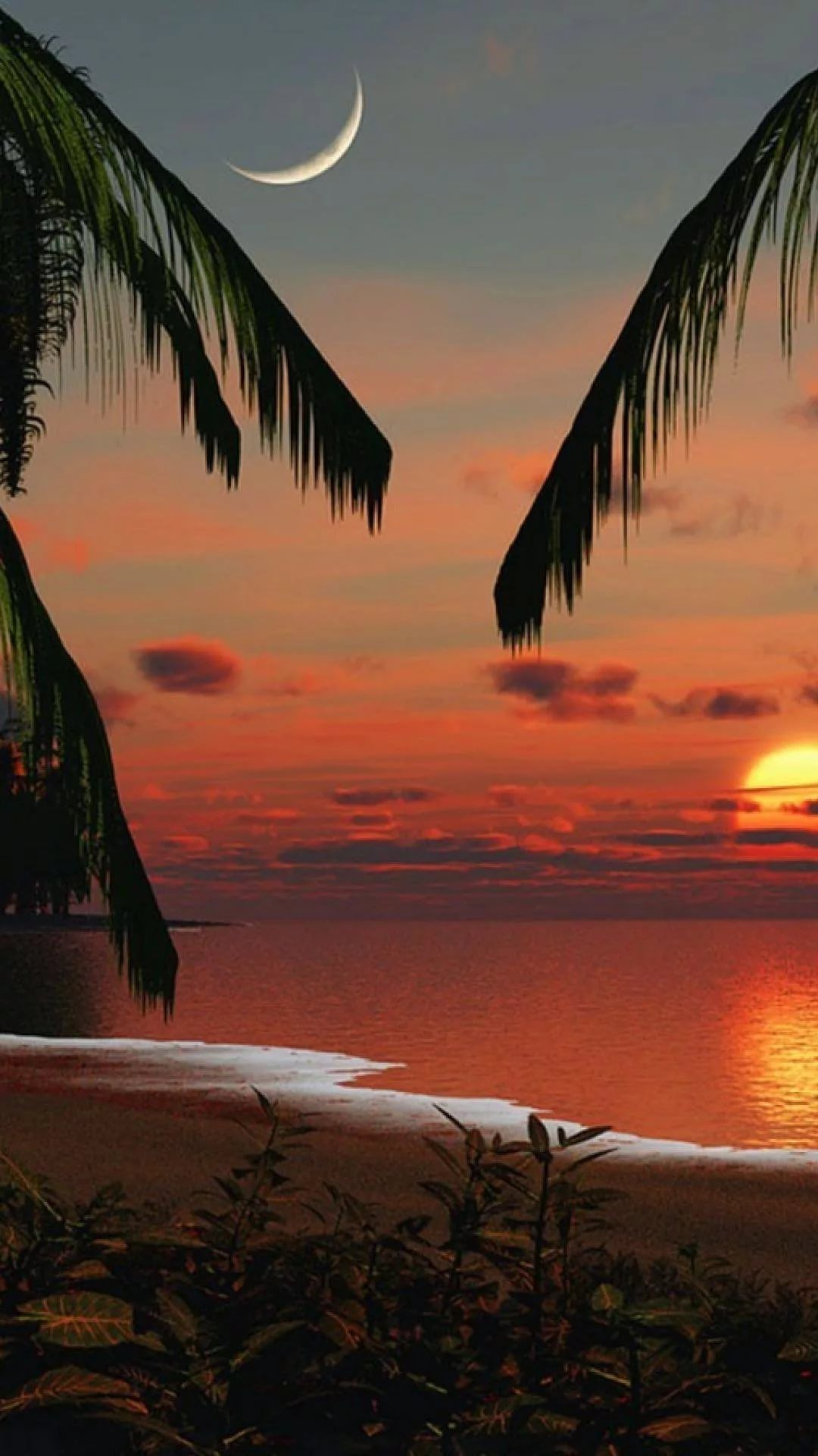 Beautiful Sunset free wallpaper for Android