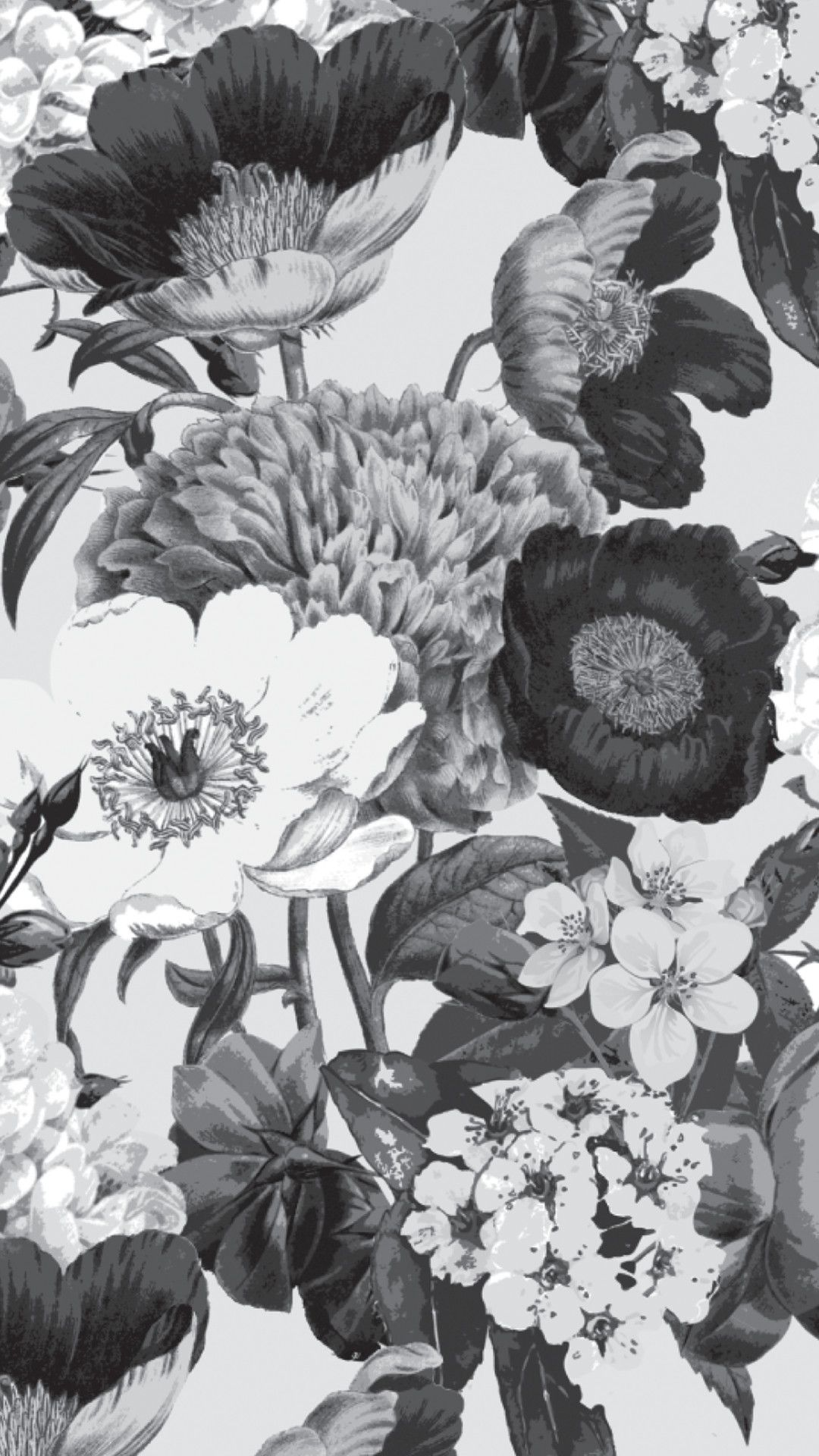 Black And White Flower iPhone xs wallpaper download