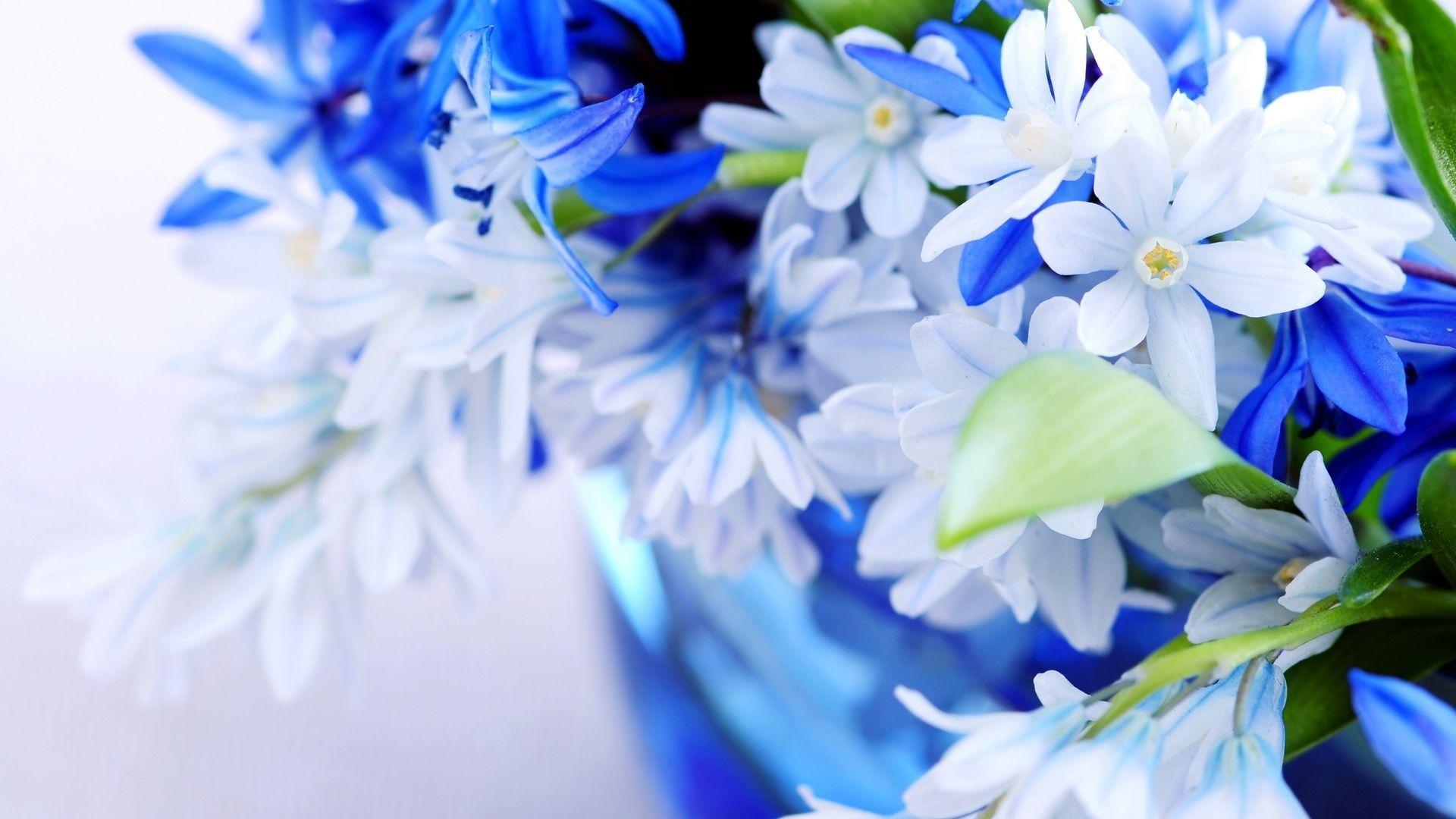 Cute Blue screen wallpaper