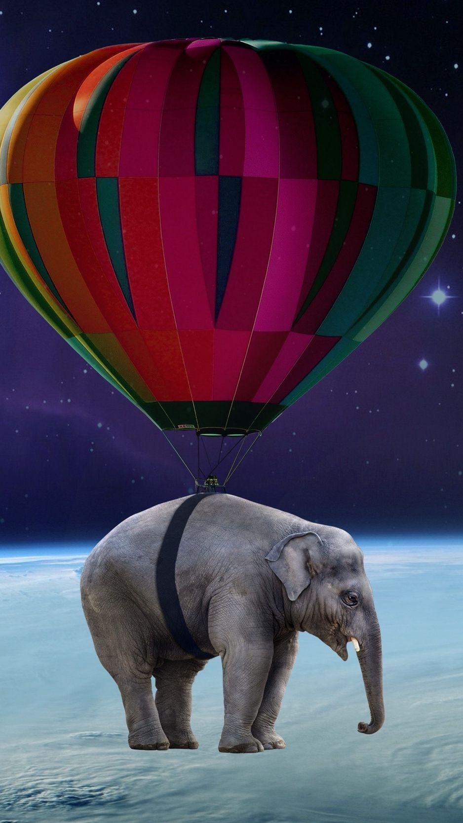 Elephant iPhone Wallpaper HD