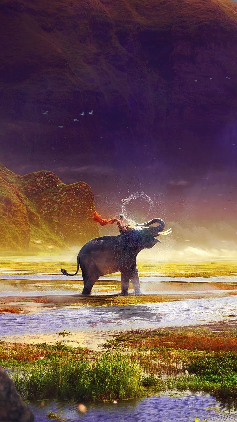 Elephant iPhone 5 wallpaper