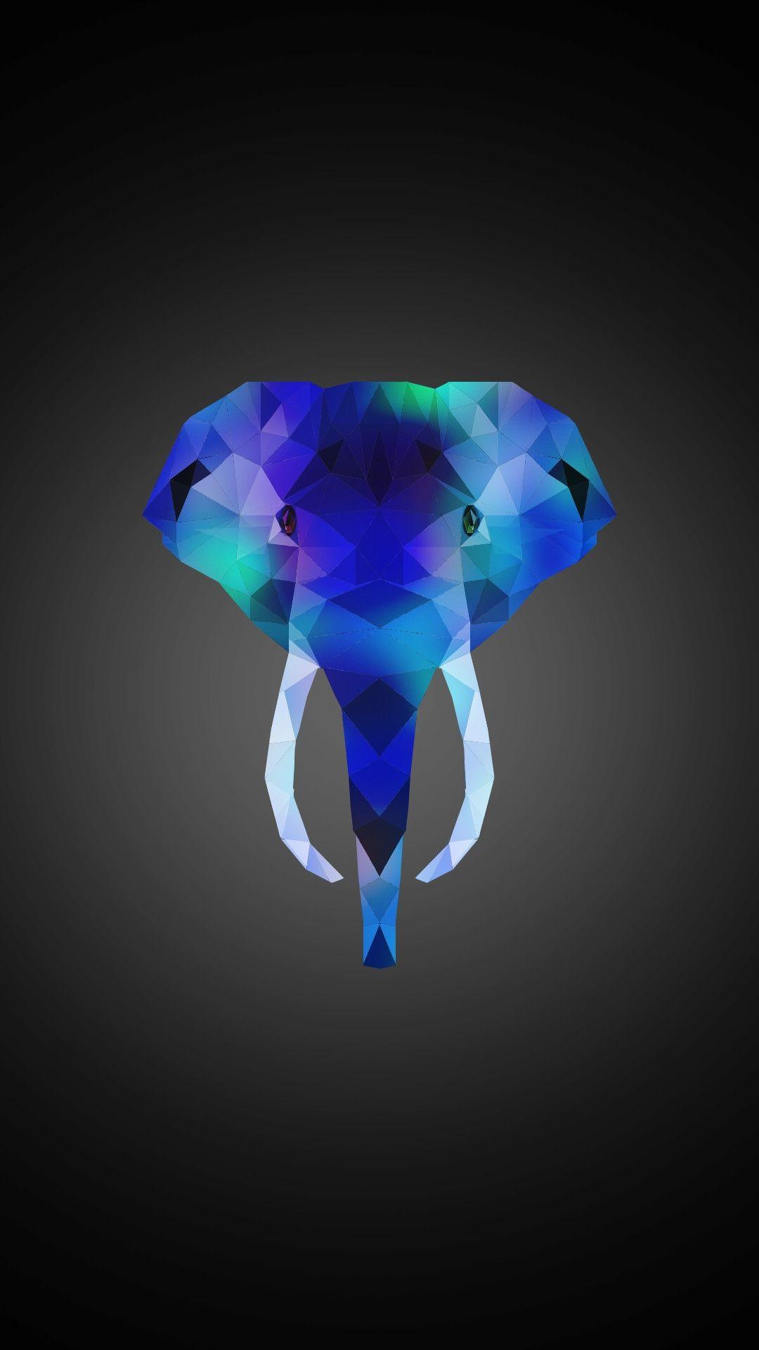 Elephant iPhone 7 Wallpaper