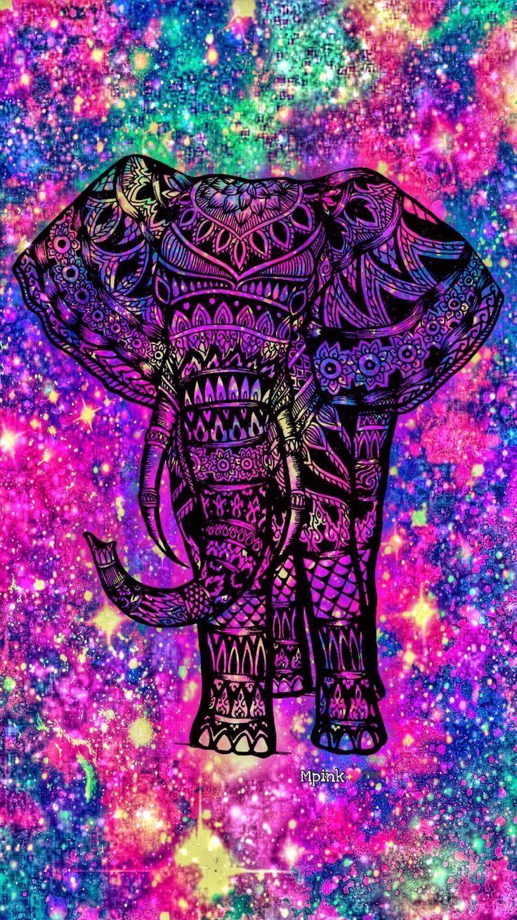 Elephant wallpaper iPhone
