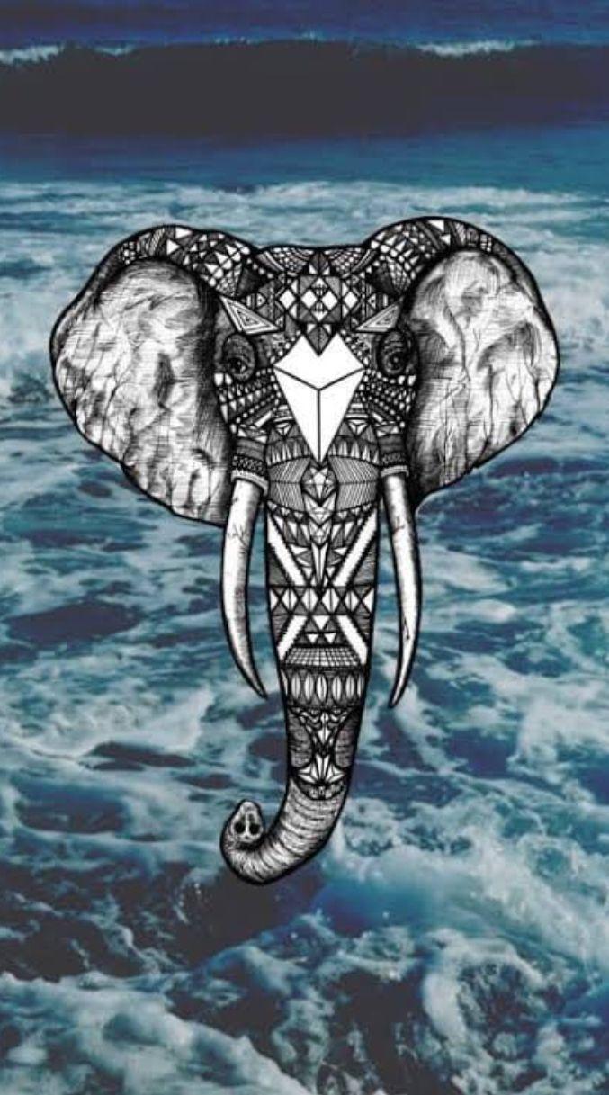 Elephant iPhone x wallpaper
