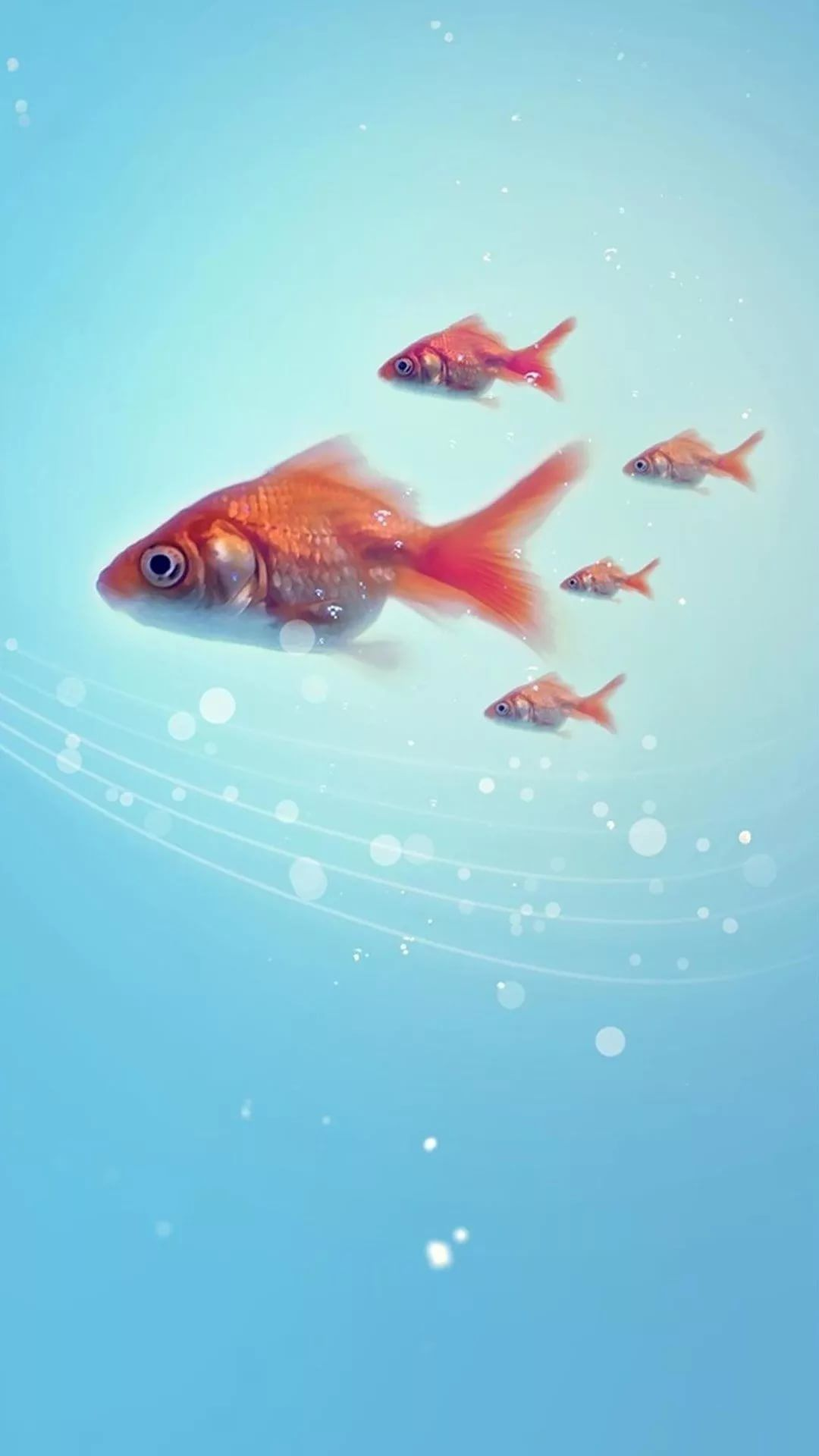 Fish iPhone 7 Wallpaper