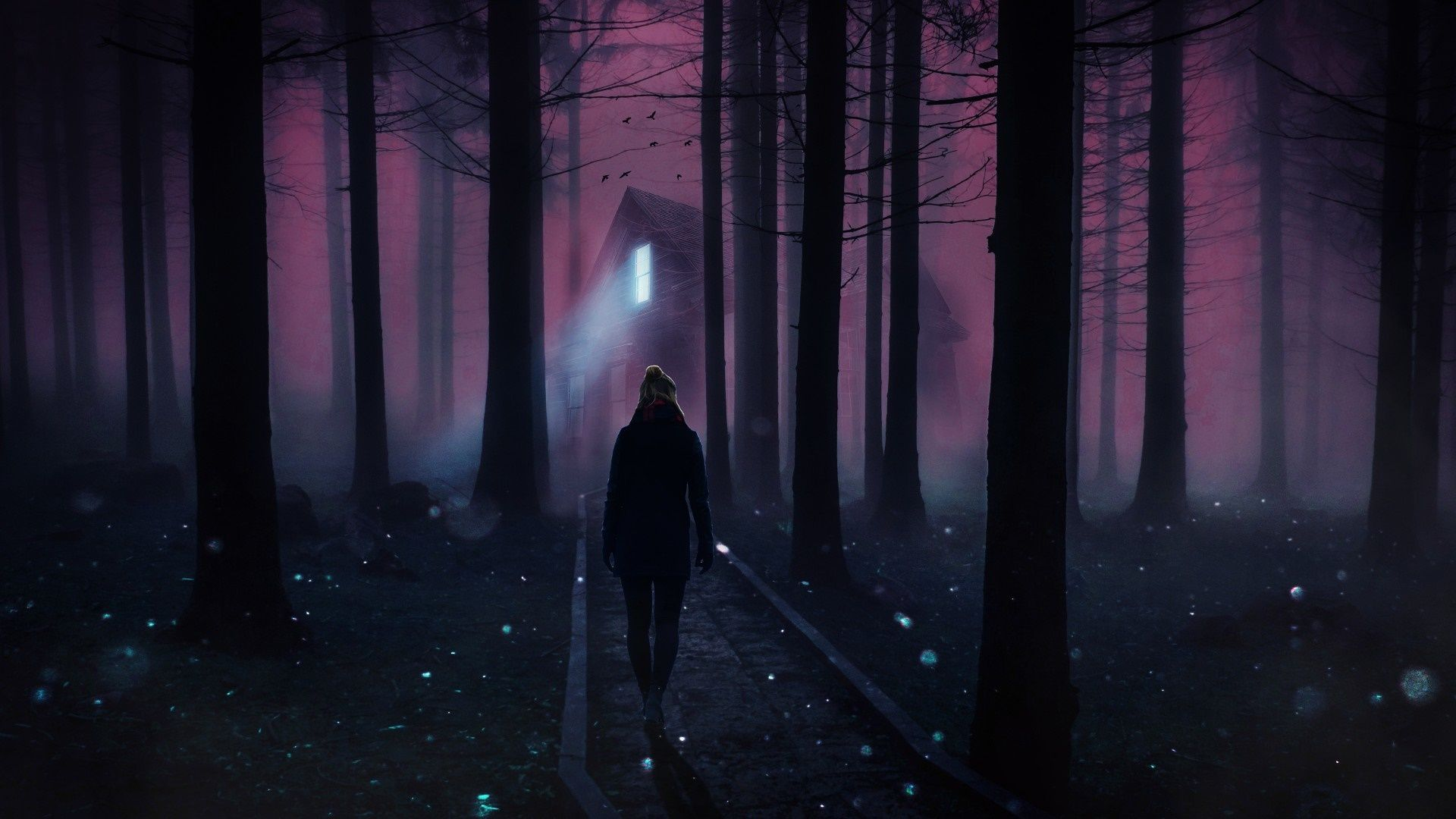 Forest At Night In The Fog, Ghosts In The Night Forest wallpaper