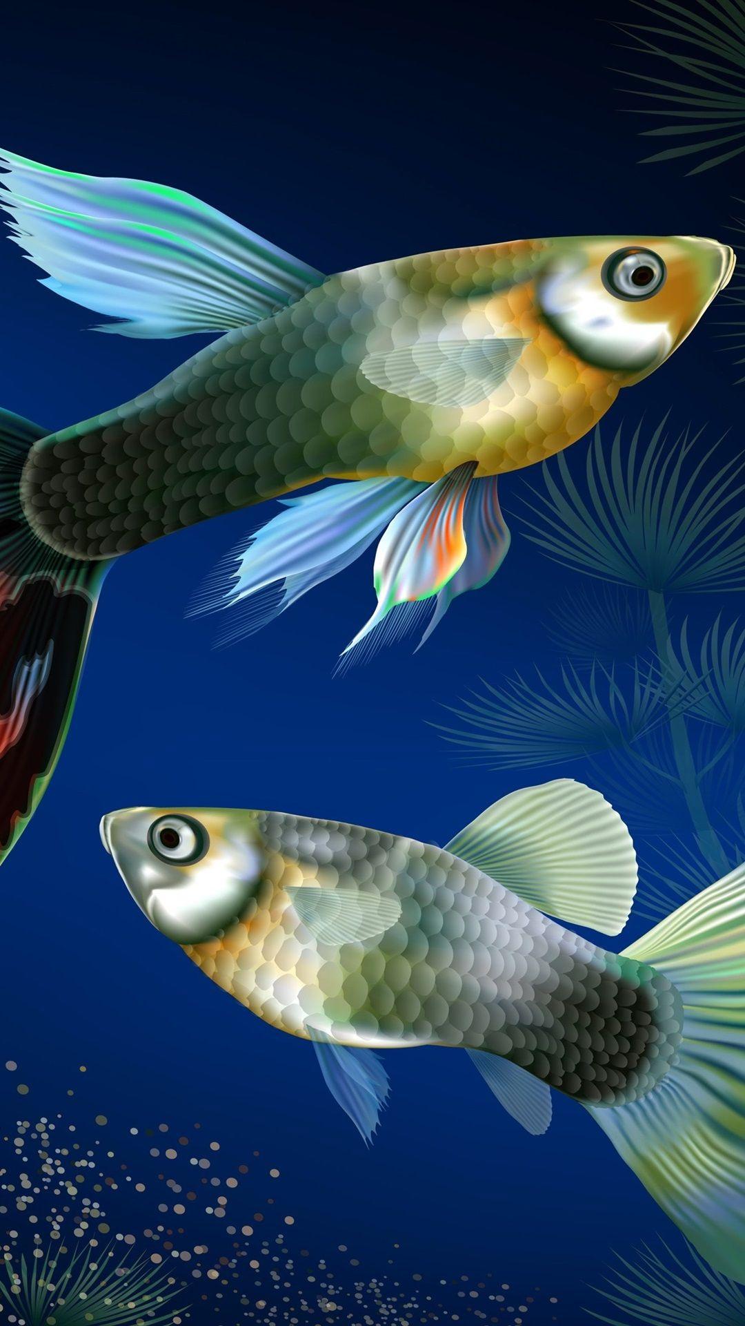Free Tropical Fish Samsung Galaxy wallpaper