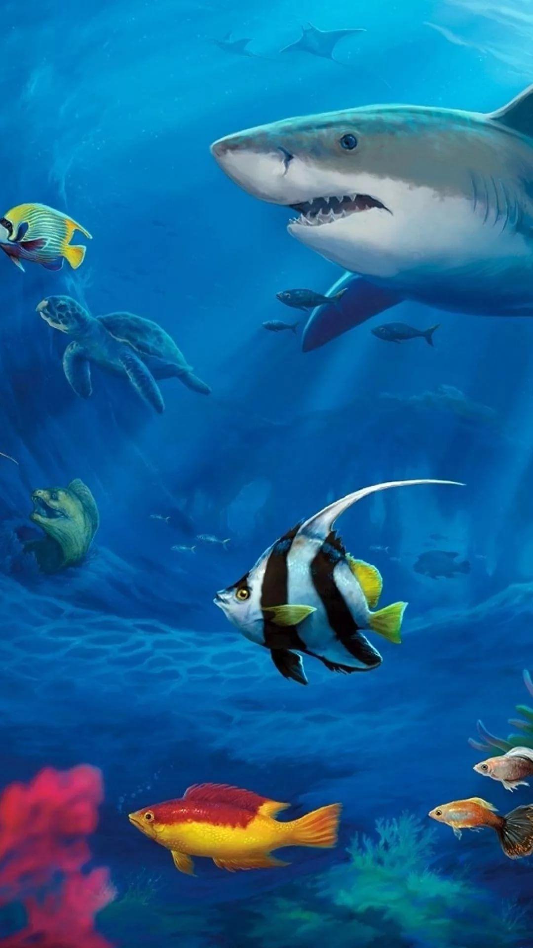 Free Tropical Fish iPhone 8 wallpaper