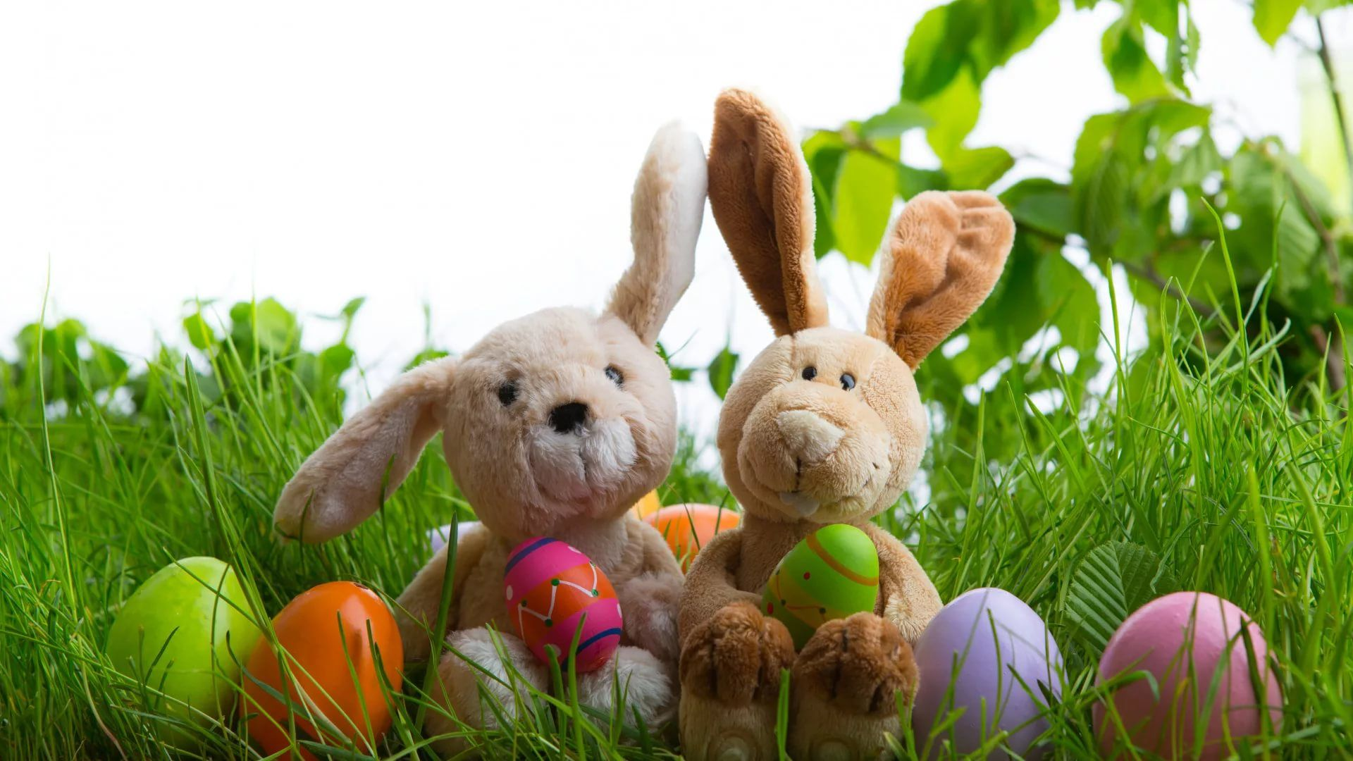 Happy Easter Cool HD Wallpaper