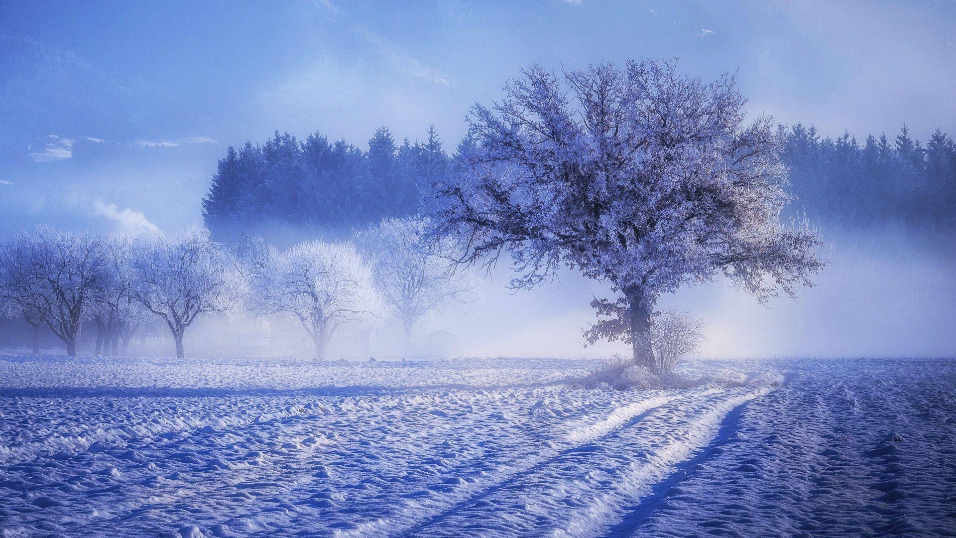 Happy Winter wallpaper photo full hd