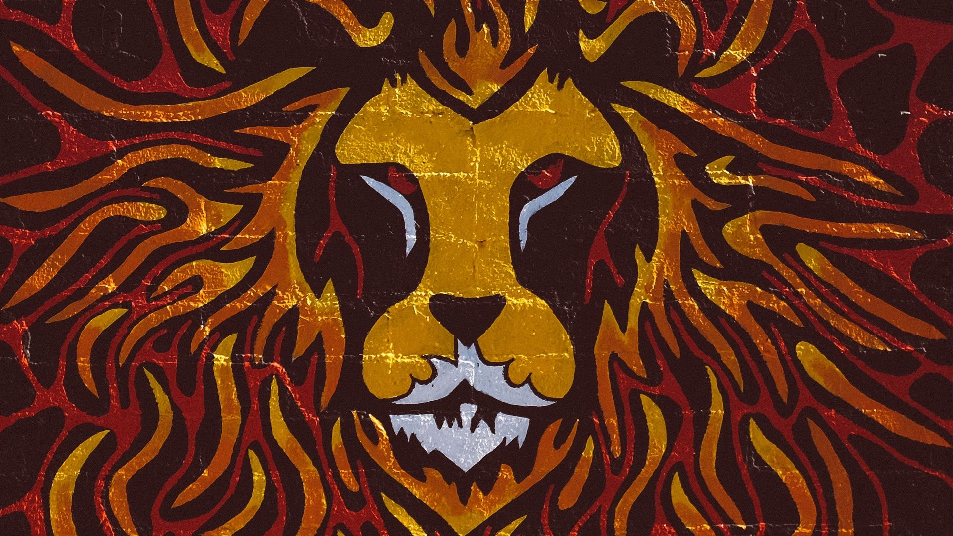 Lion Art a wallpaper